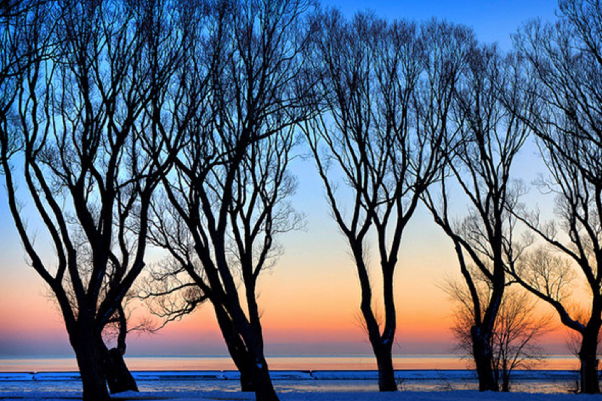 Sunnyside Beach Winter