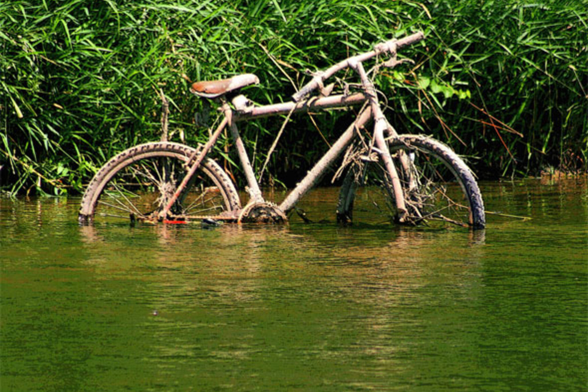 river_bike.jpg