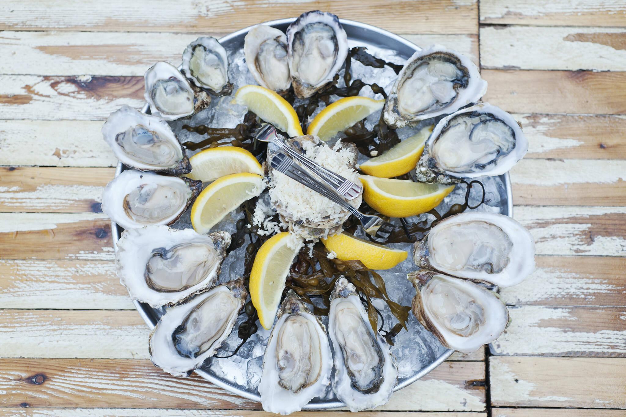 island oysters toronto