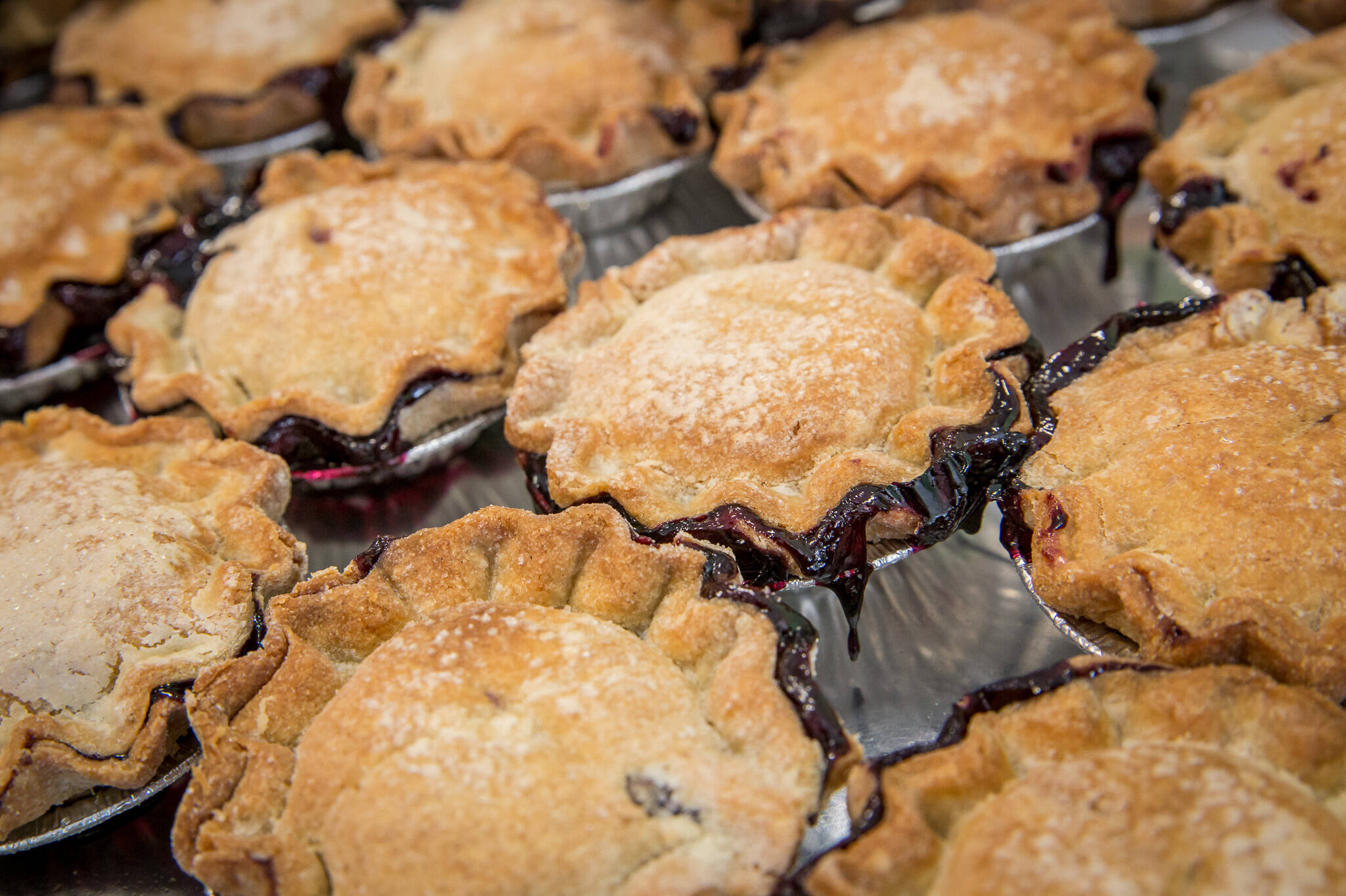gluten free pies toronto