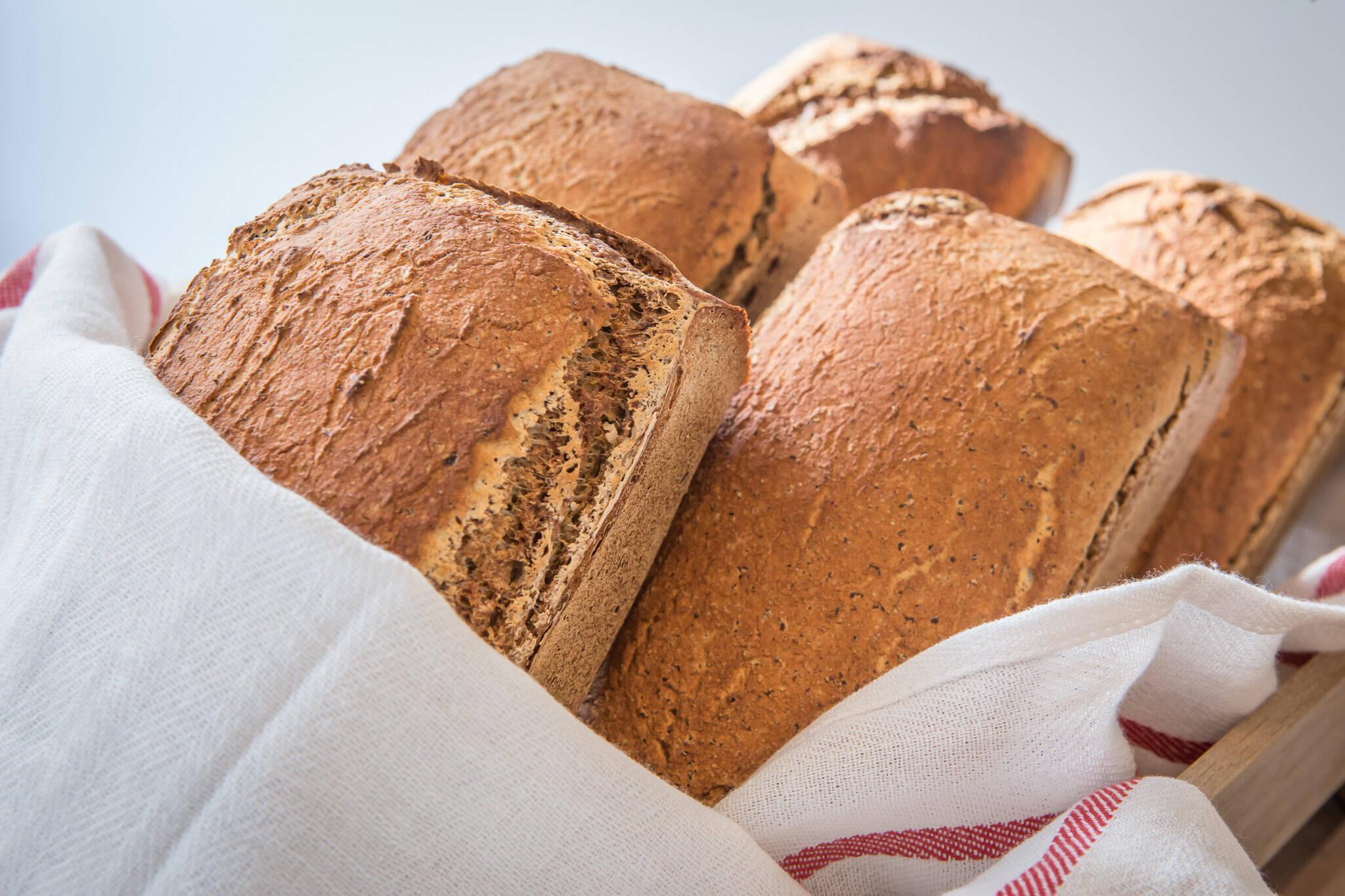 gluten free bread toronto