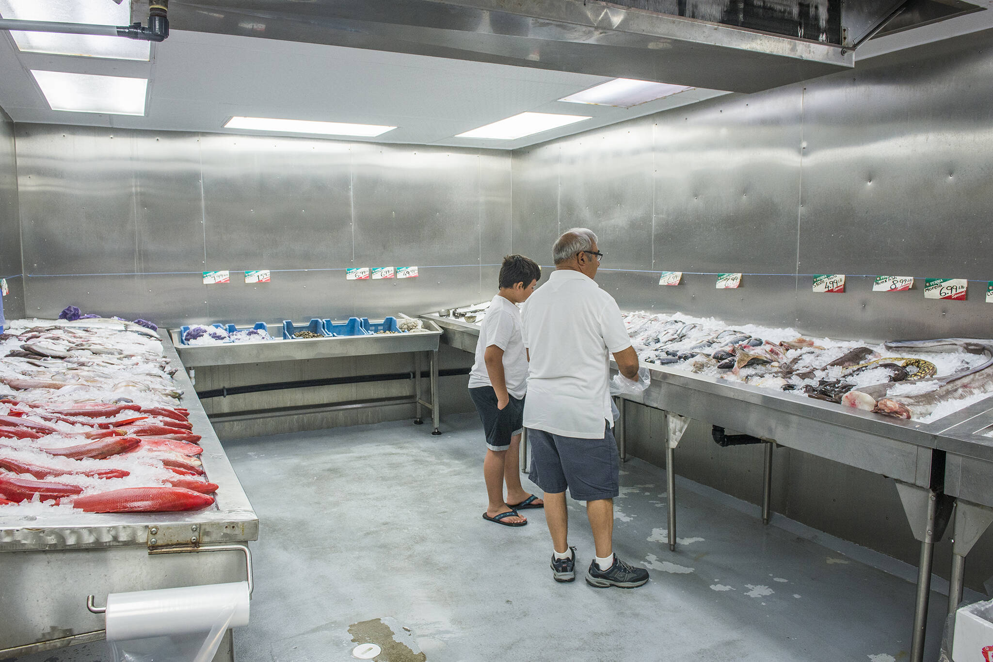 The Best Fish Stores in Toronto