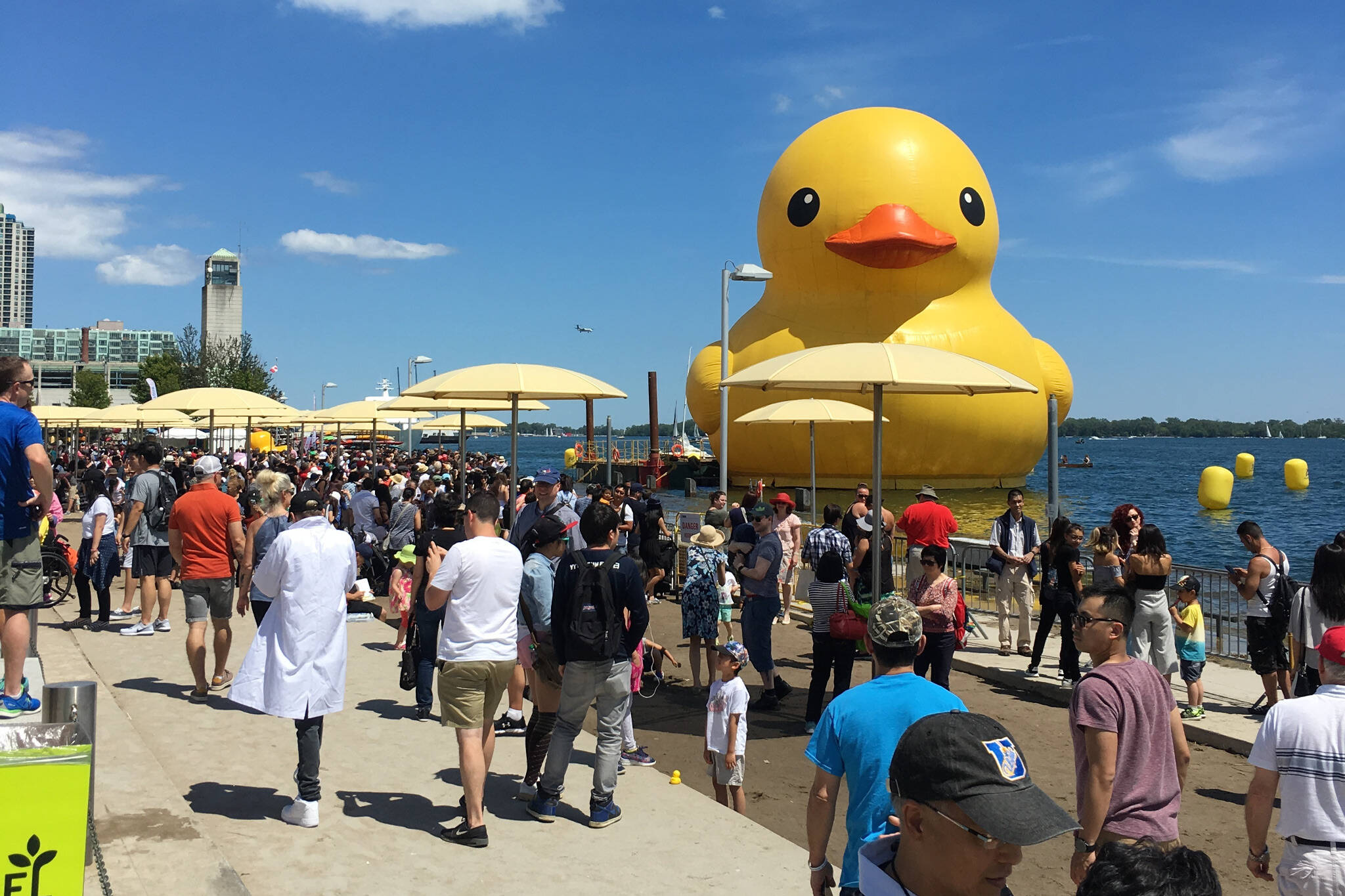 Toronto Rubber Duck