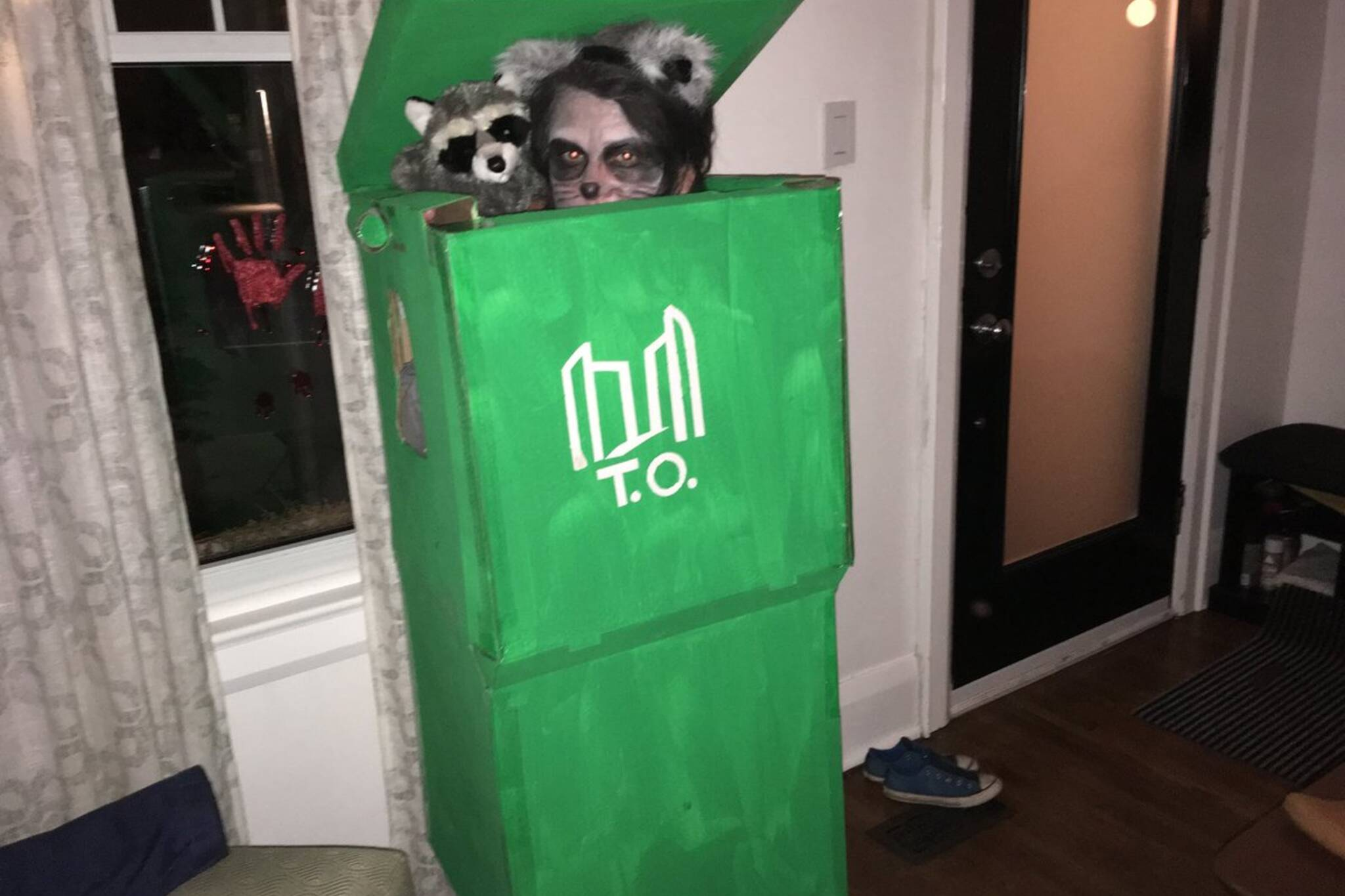 raccoon costume toronto