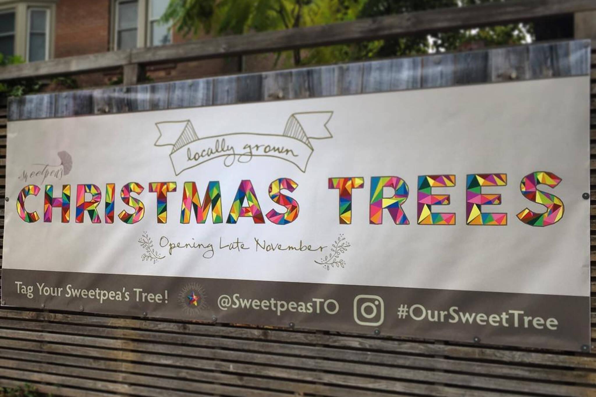 Sweetpea Christmas trees