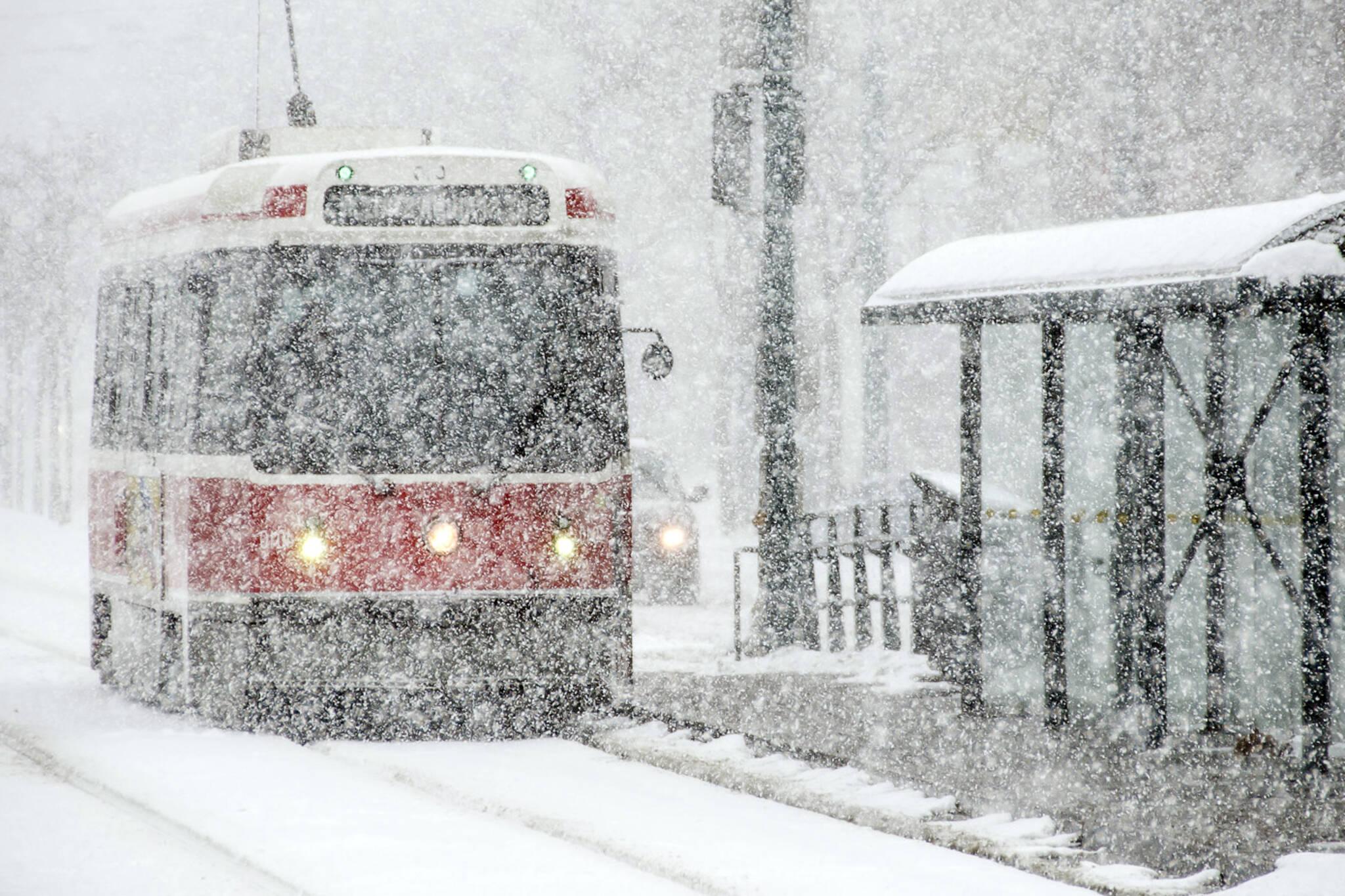 Toronto white Christmas