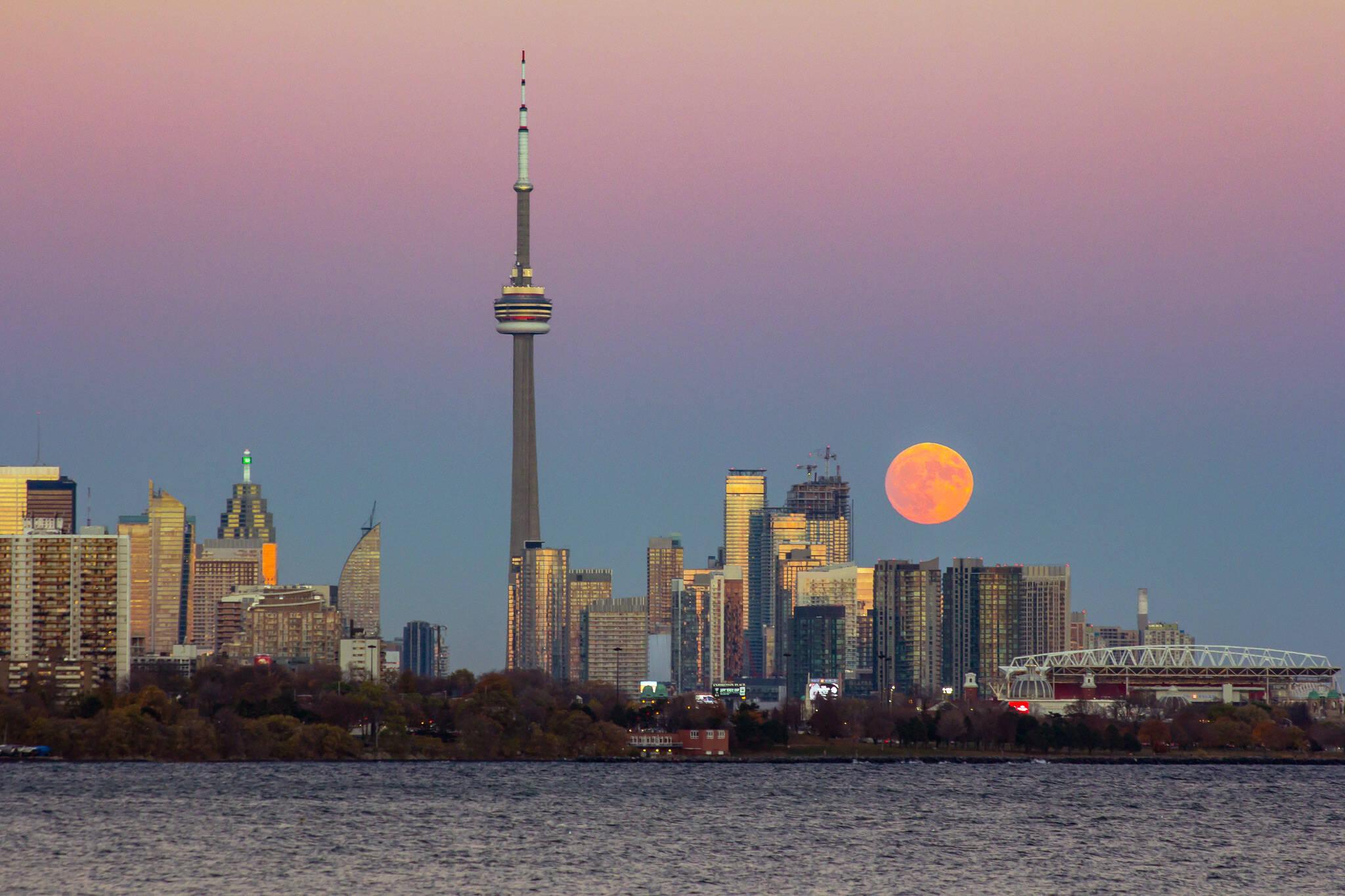 pink moon toronto