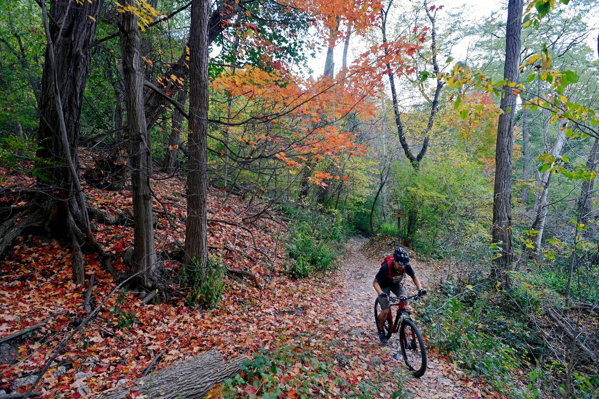 mountain biking toronto
