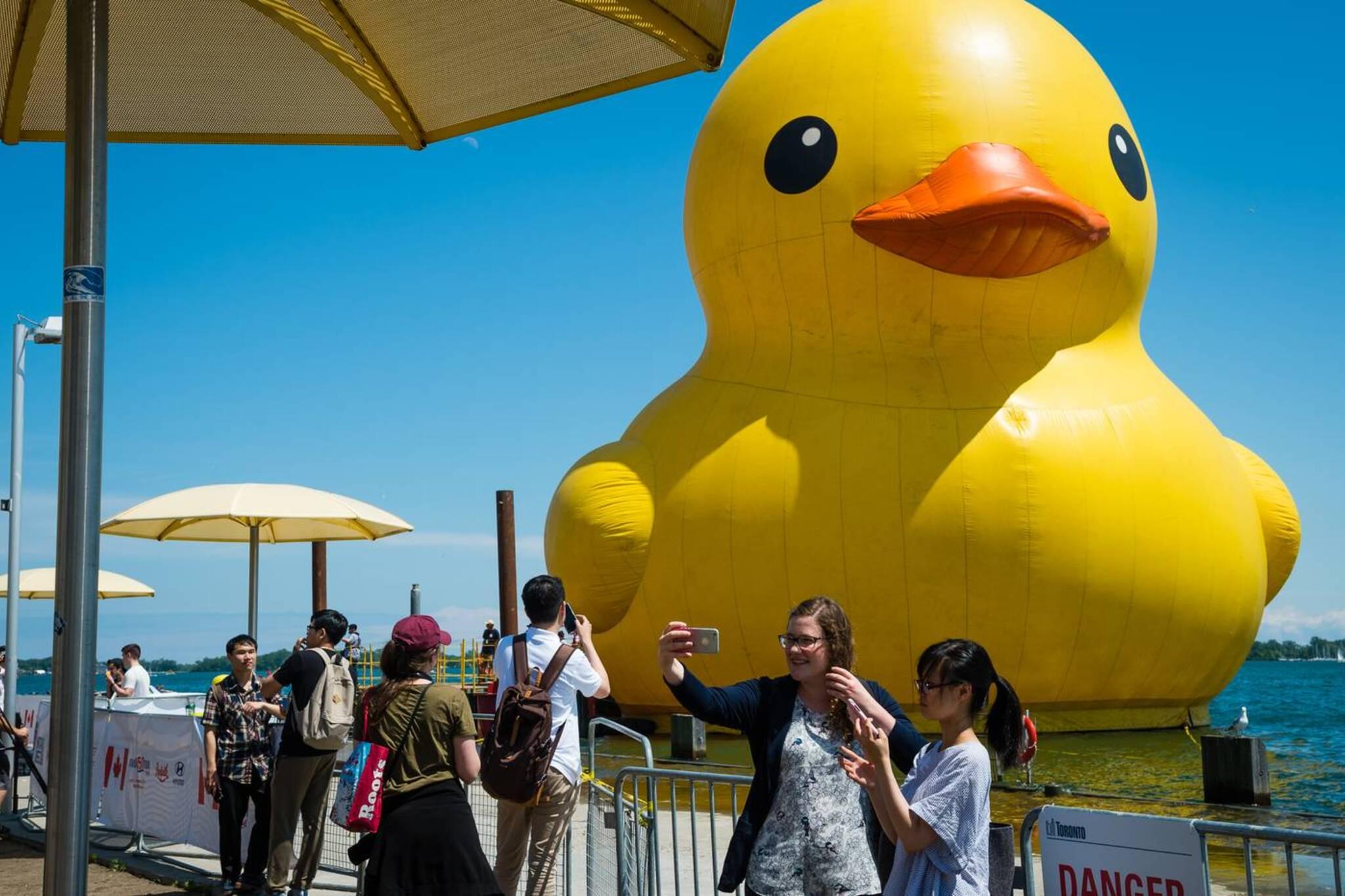 giant rubber duck toronto