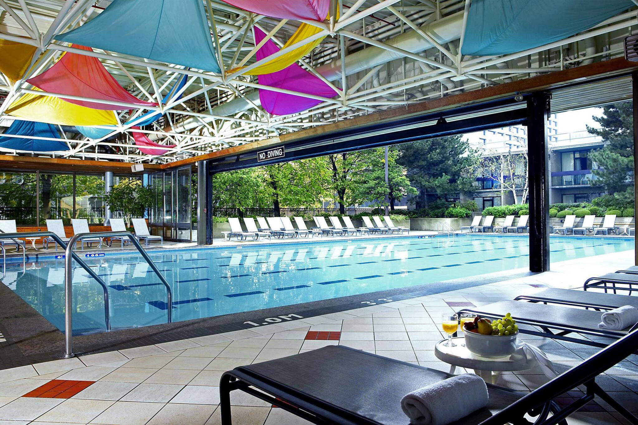 the top 5 hotel swimming pools in toronto ForSwimming Pools Downtown Toronto