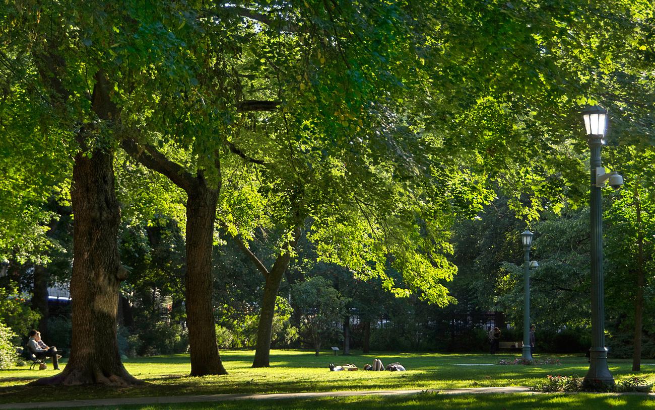 Image Result For Bathurst Parks And Gardens