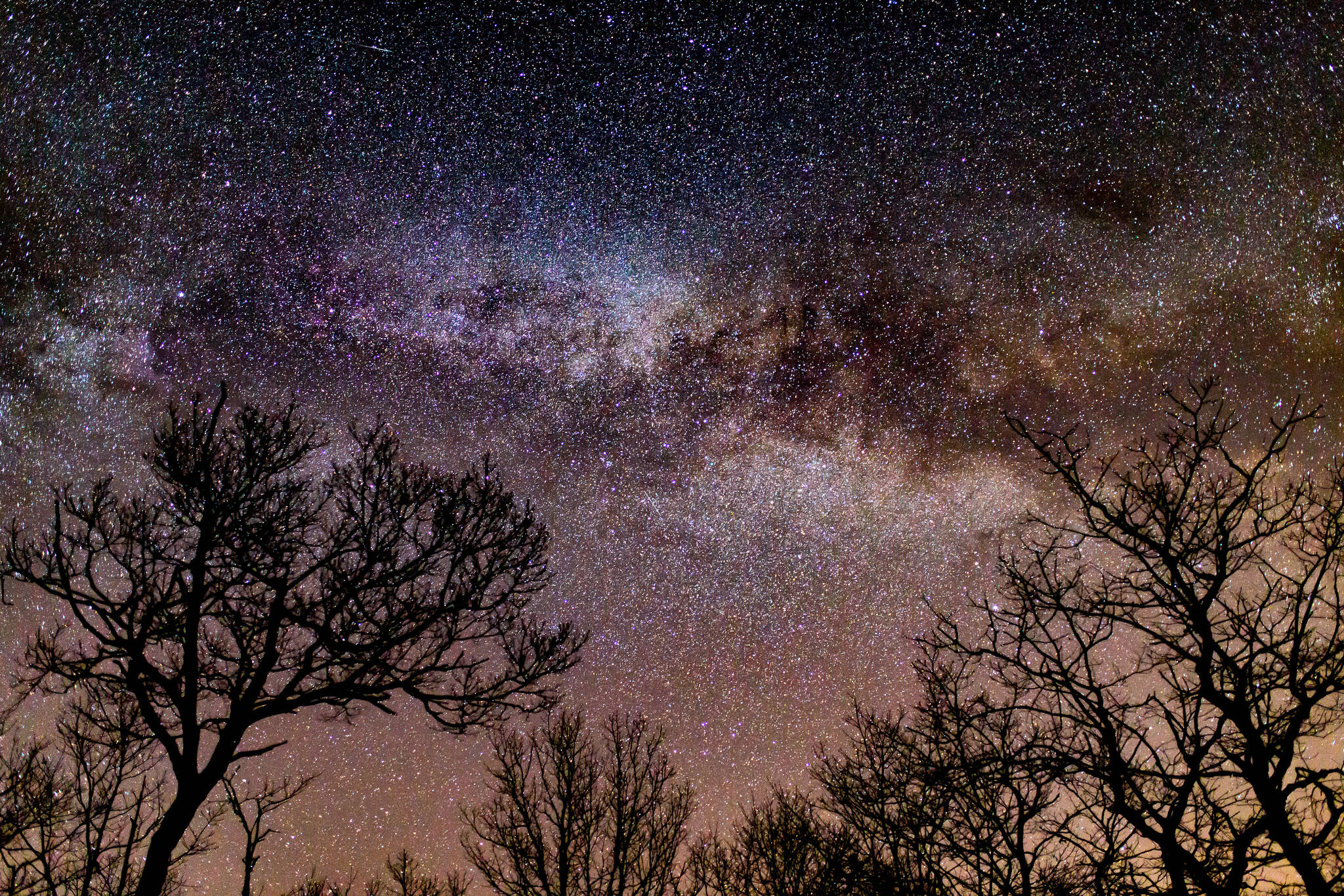 stargazing toronto