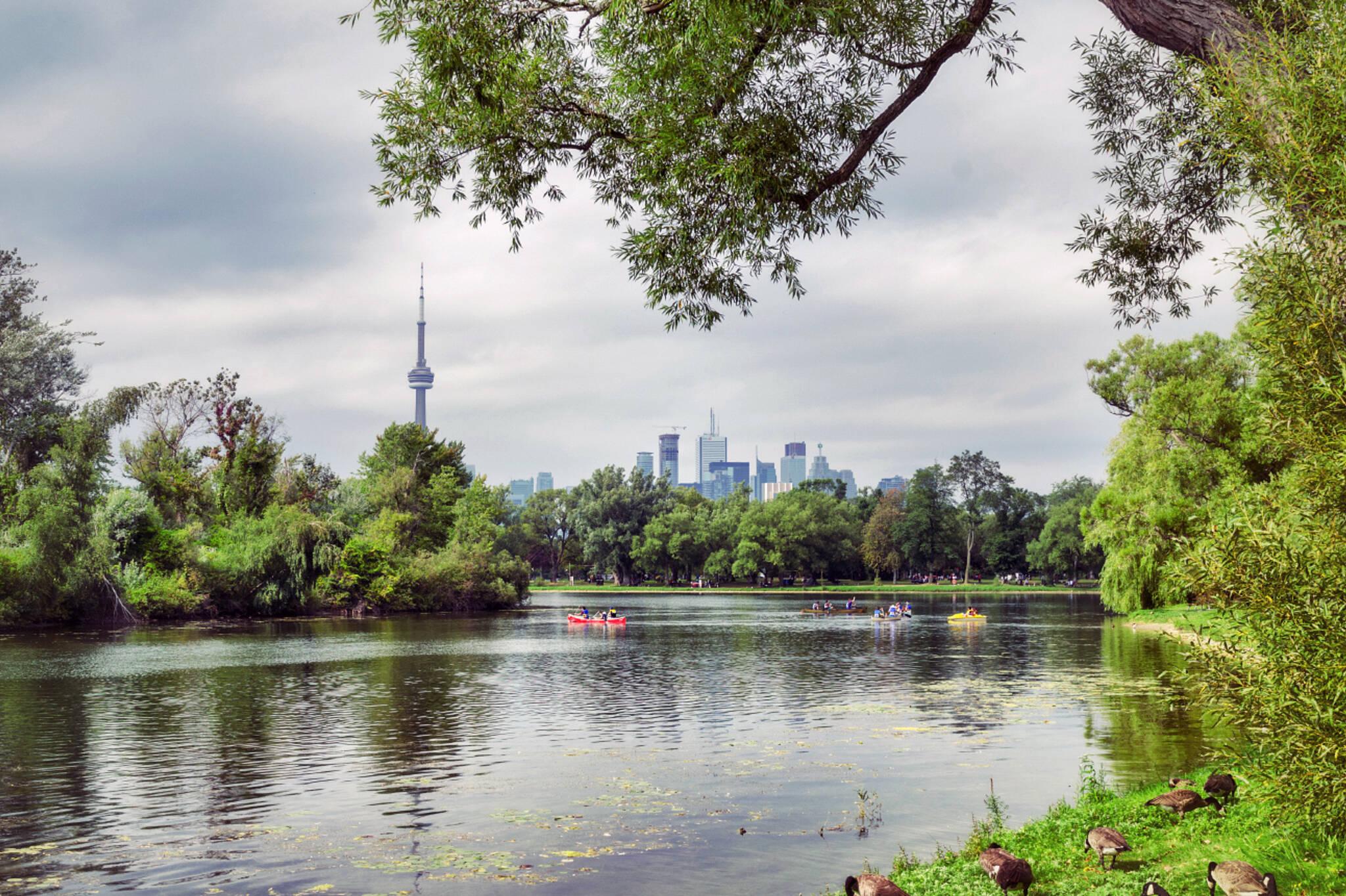 Toronto Island Things To Do