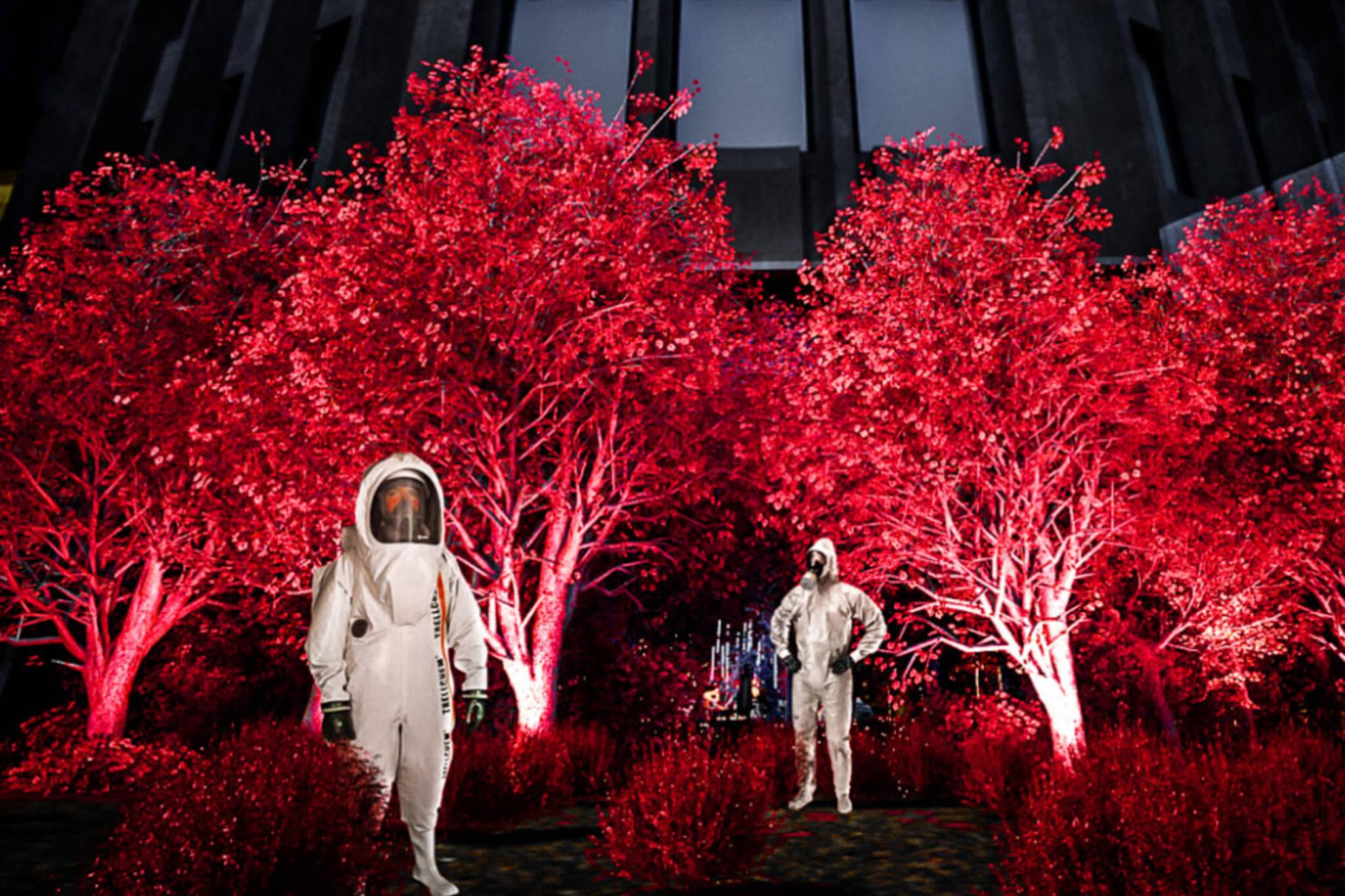Netflix Red Forest
