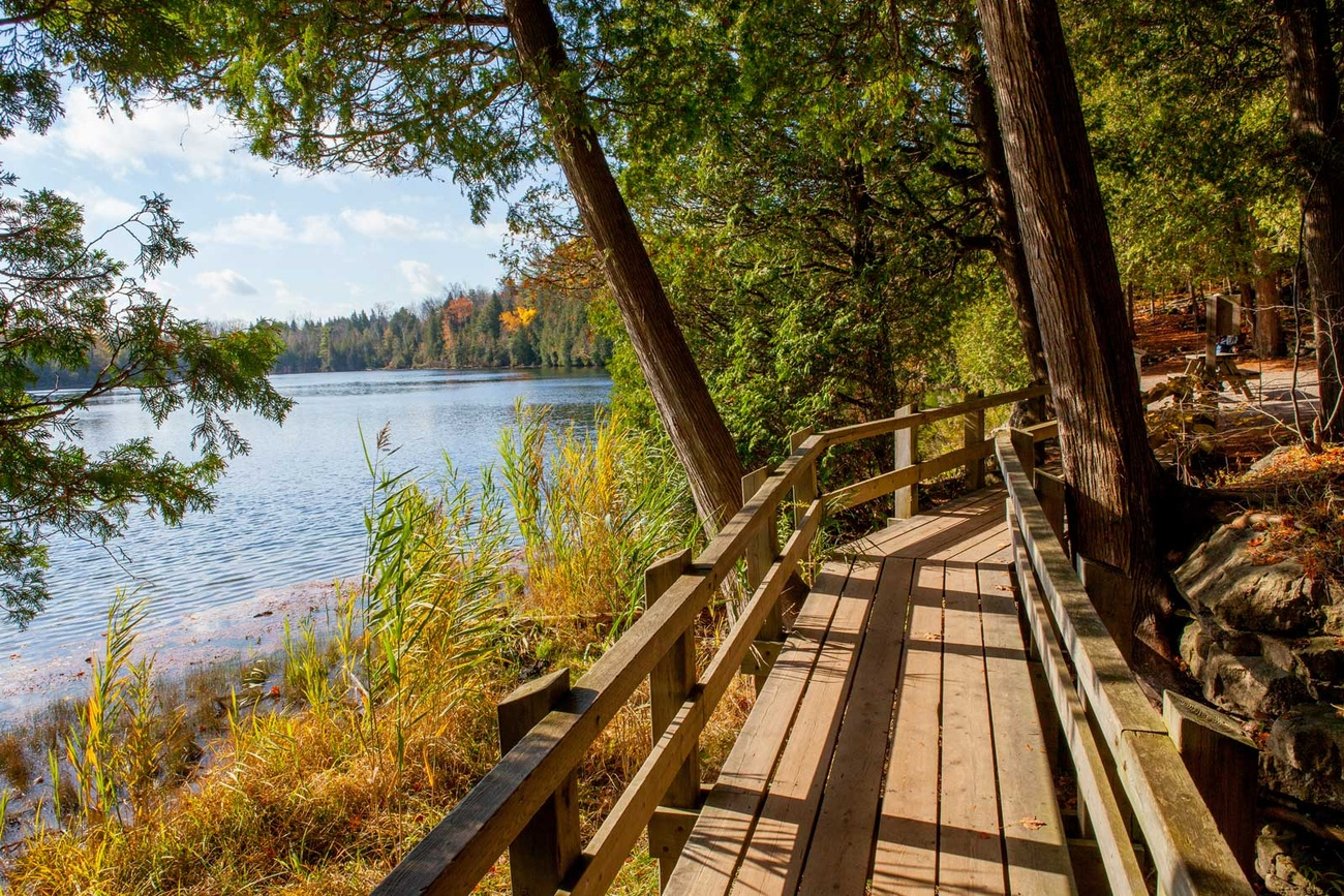 Best Places To Visit In Toronto >> This elevated boardwalk is just one hour from Toronto