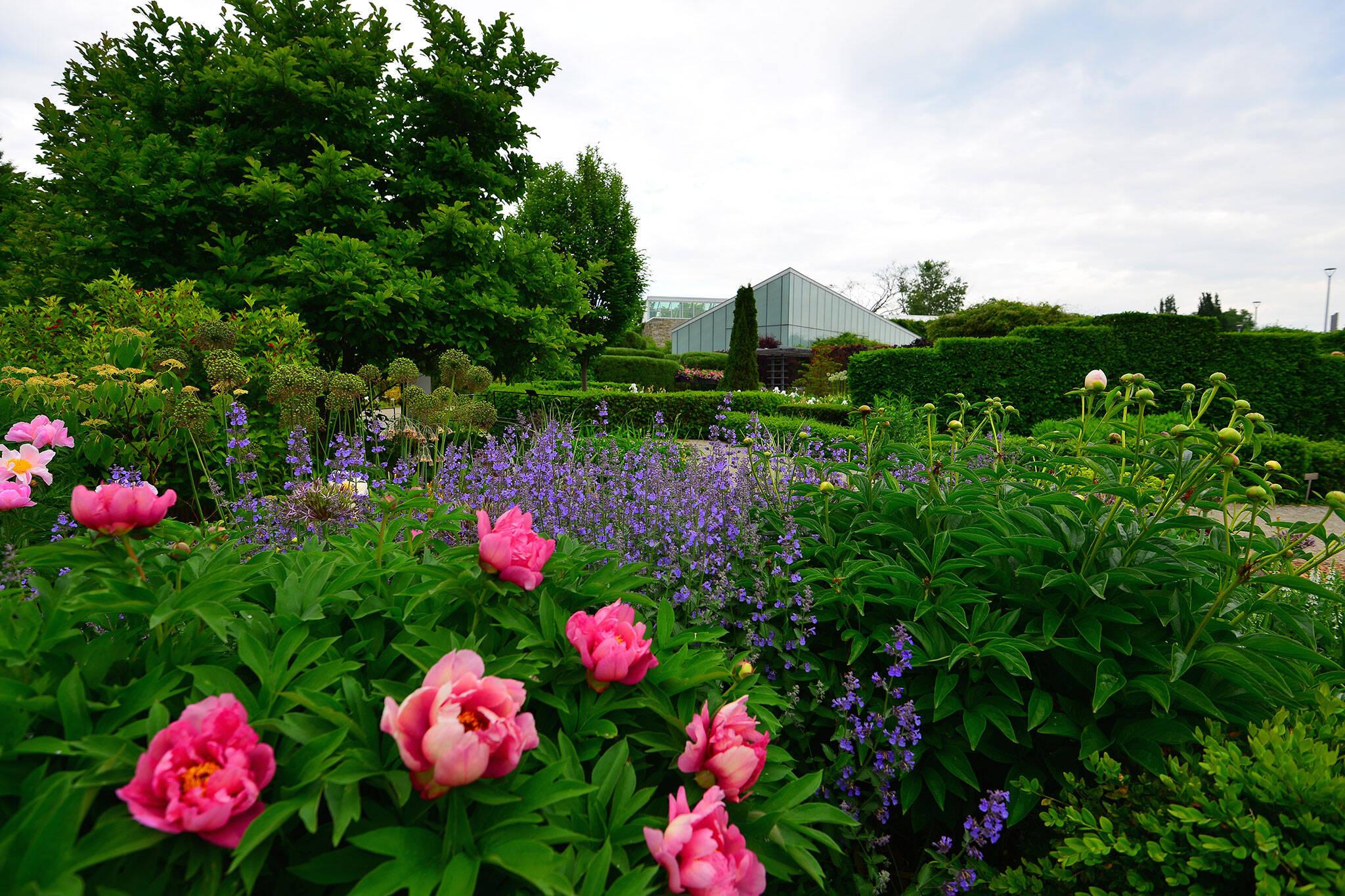 public gardens toronto