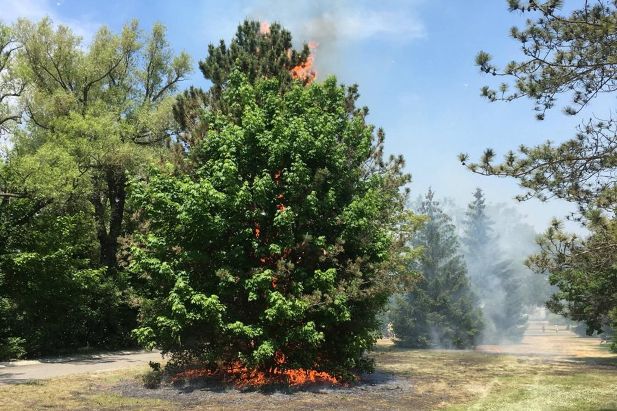 toronto islands fire