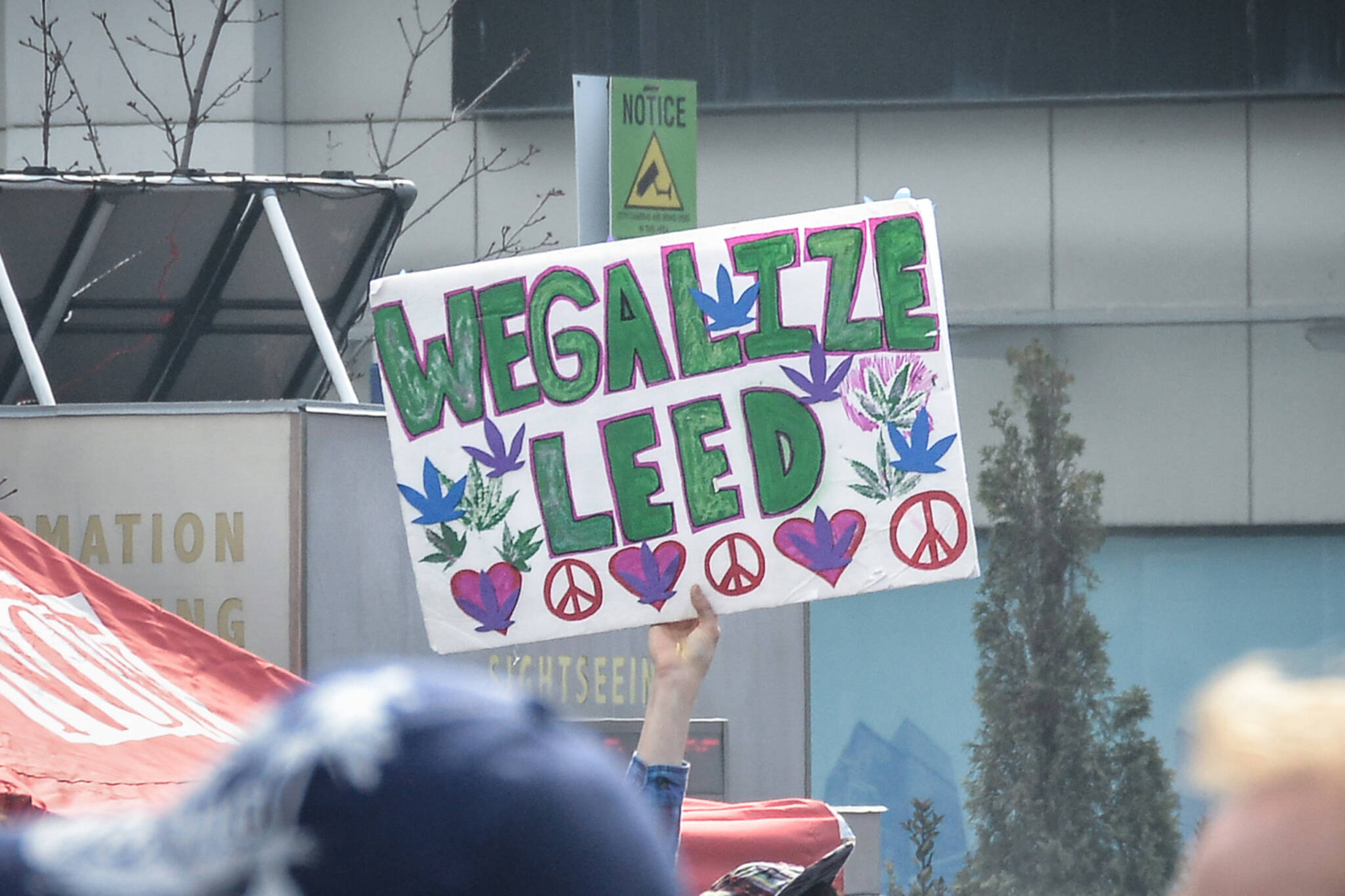 weed legalize canada