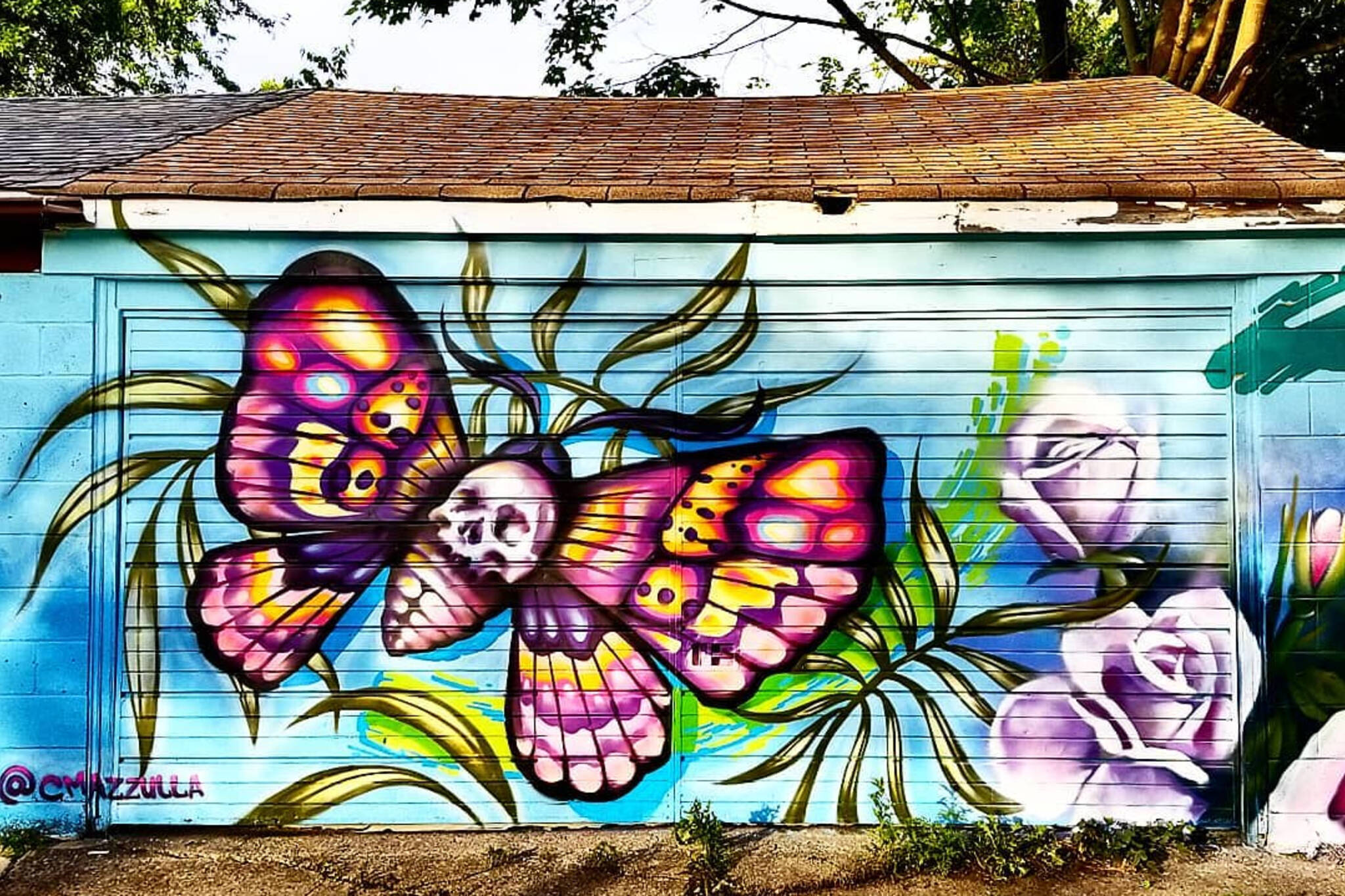 butterflyway lane toronto