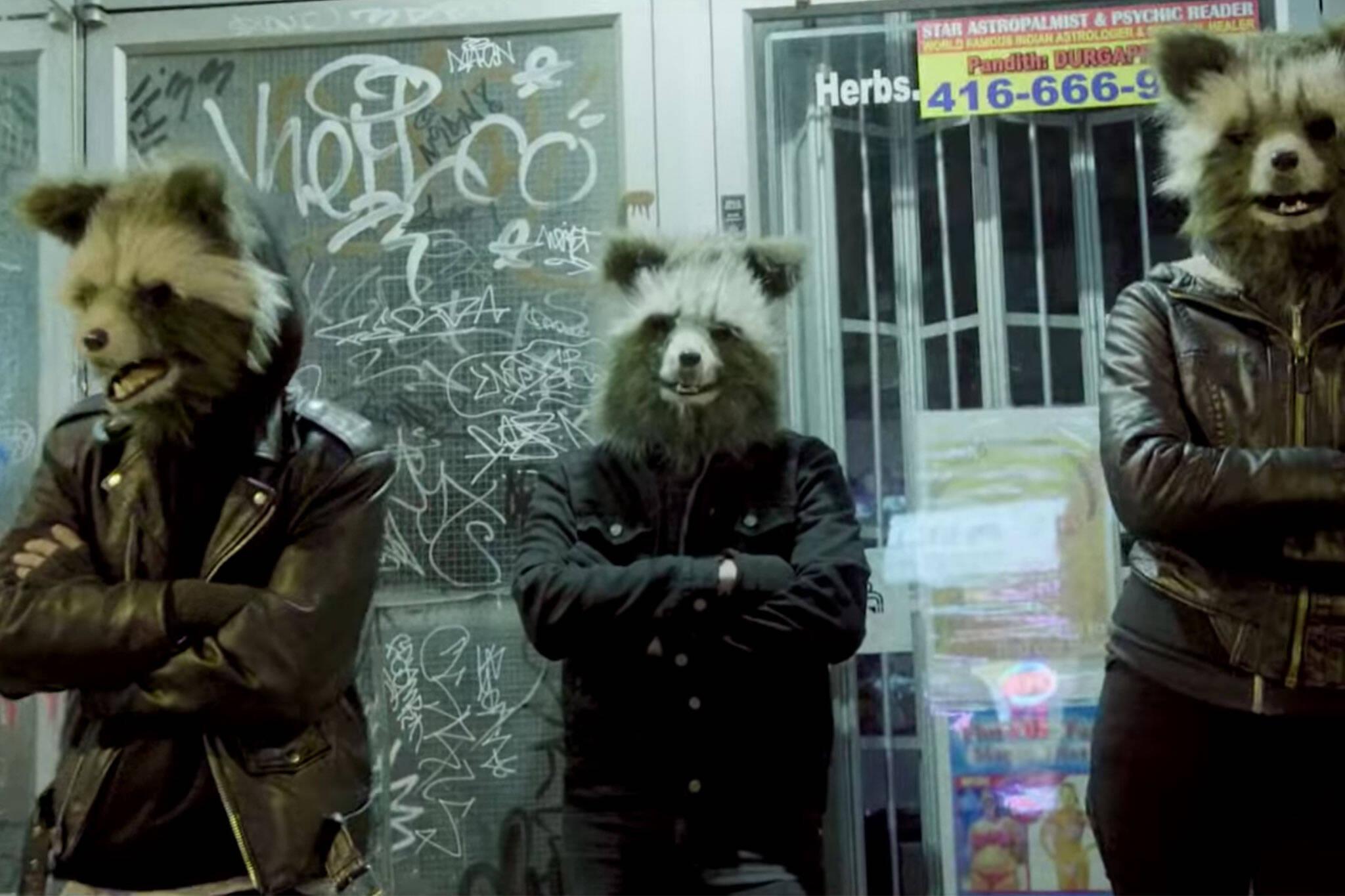 toronto raccoon music video