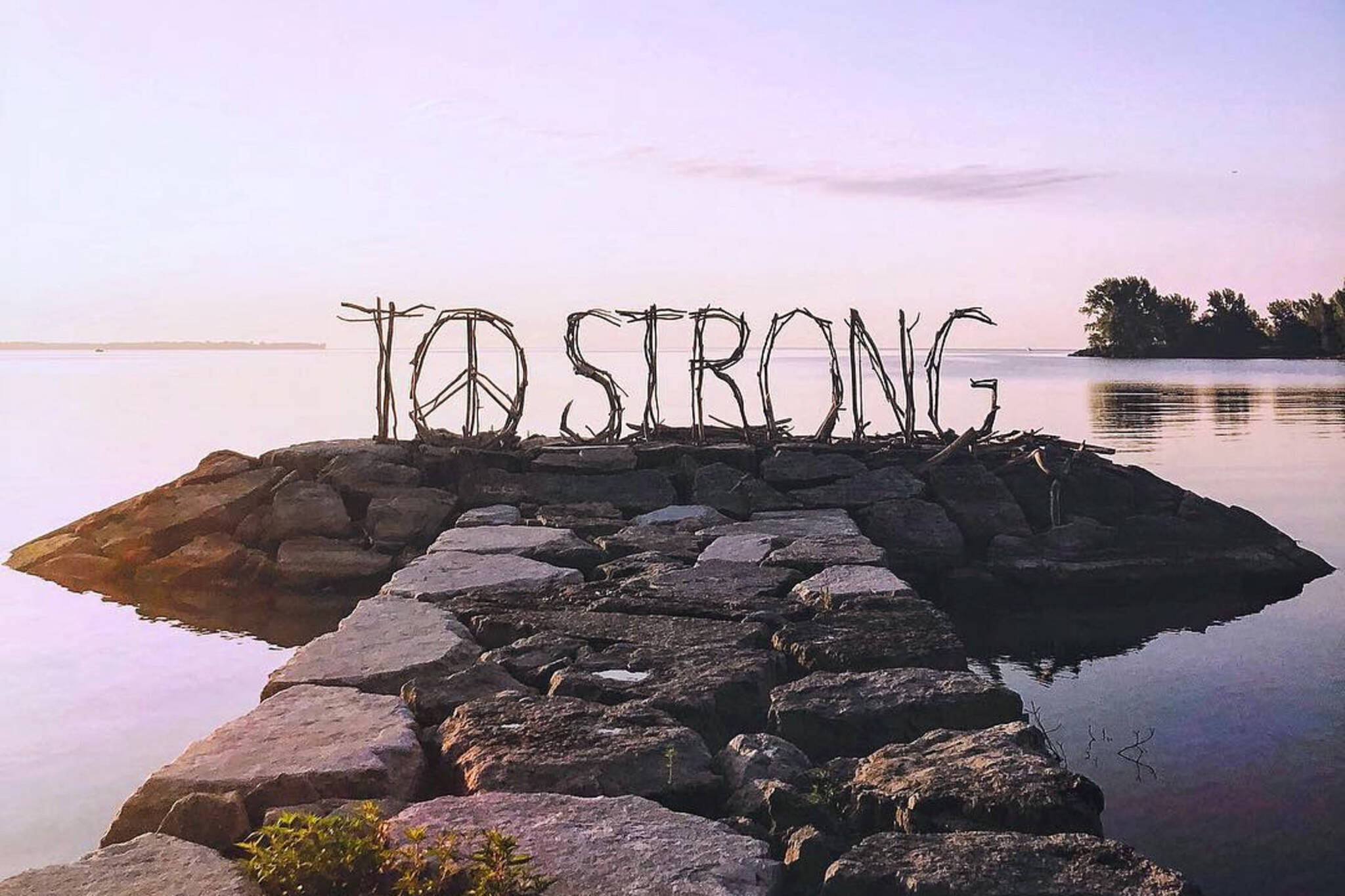 toronto strong driftwood sign