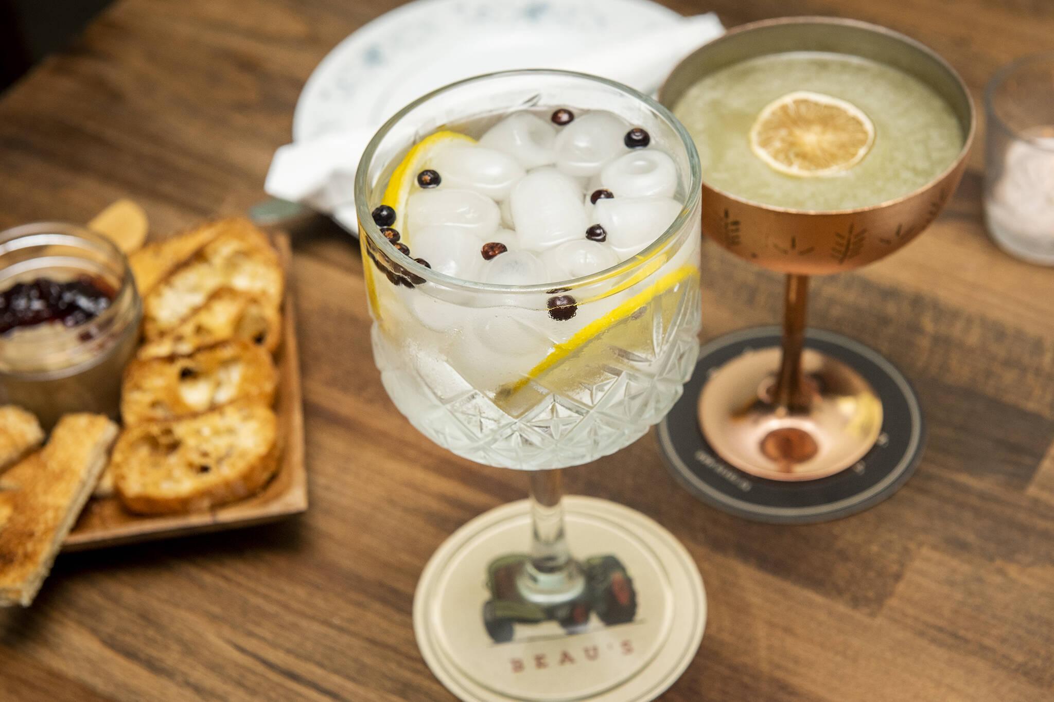 Gin Tonic Toronto