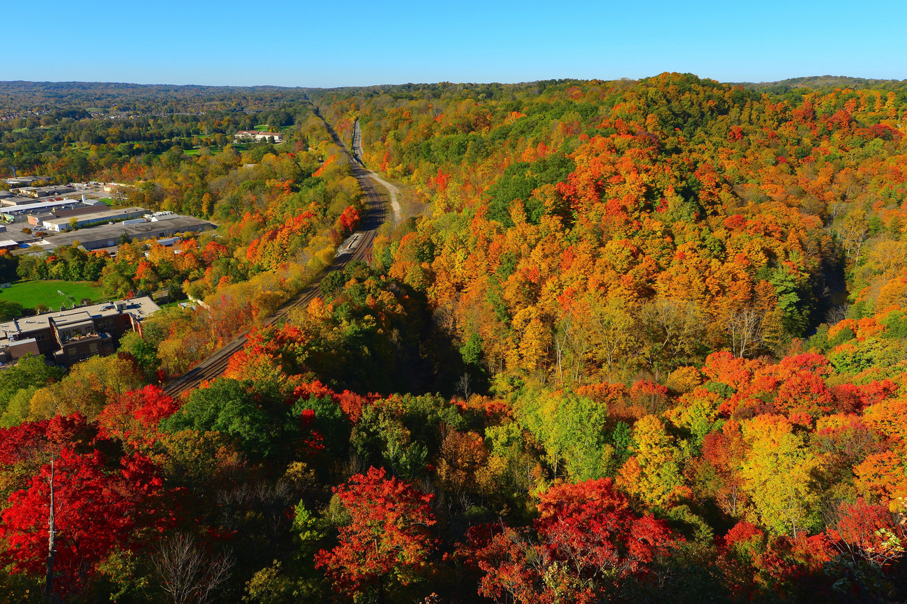 5 breathtaking lookouts for fall colours near Toronto