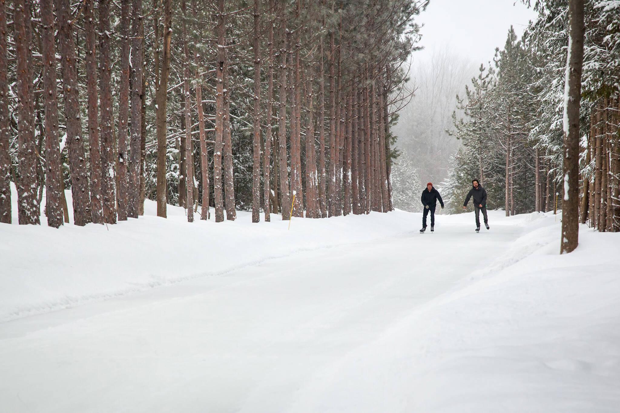 woodview skating trail