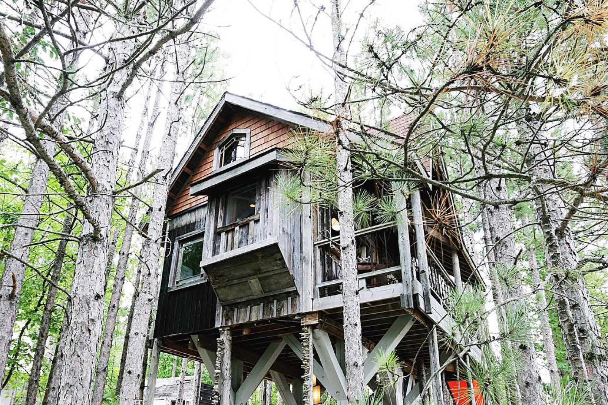 treehouse toronto