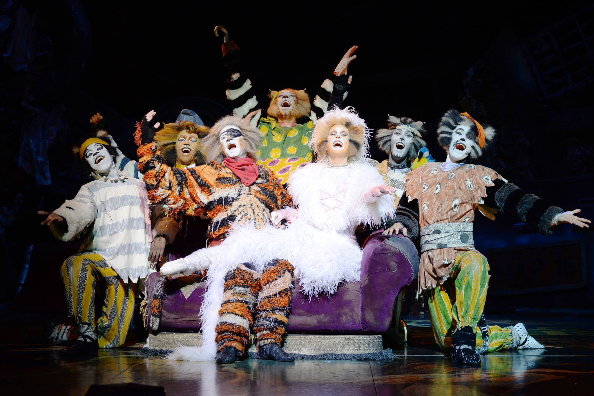 cats musical toronto
