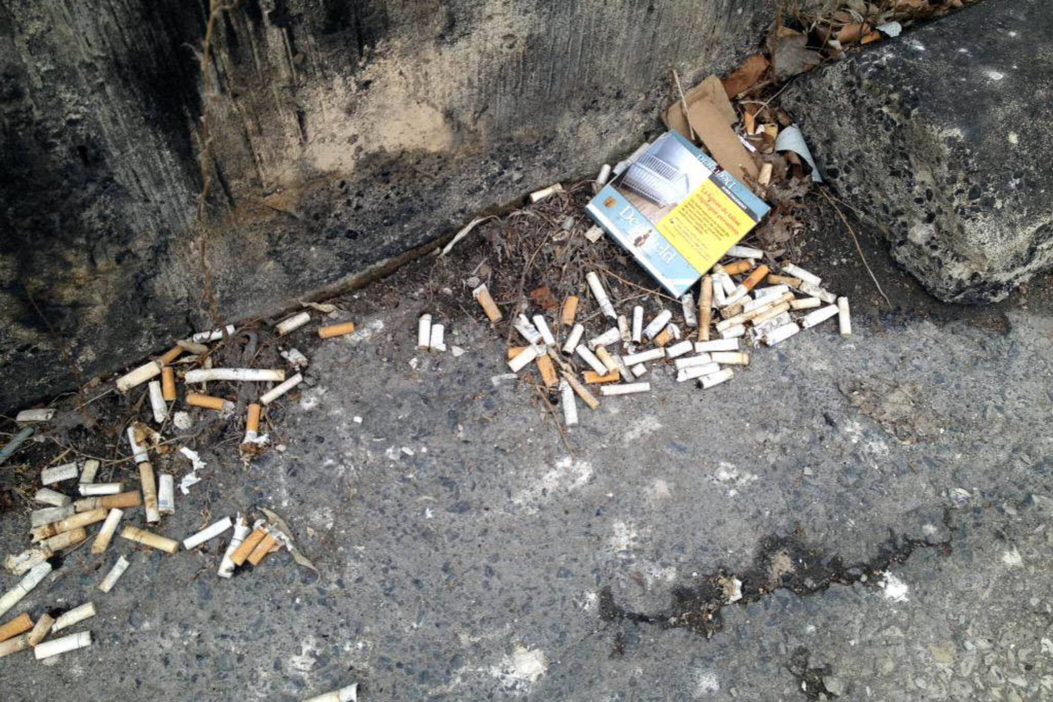cigarette butts toronto
