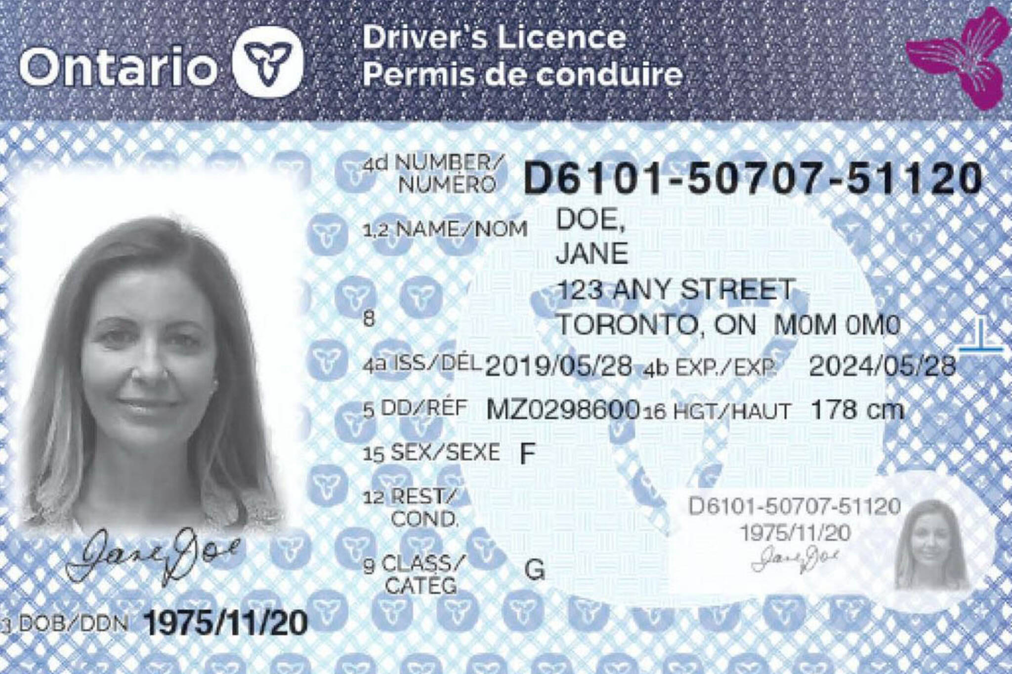 new licences ontario