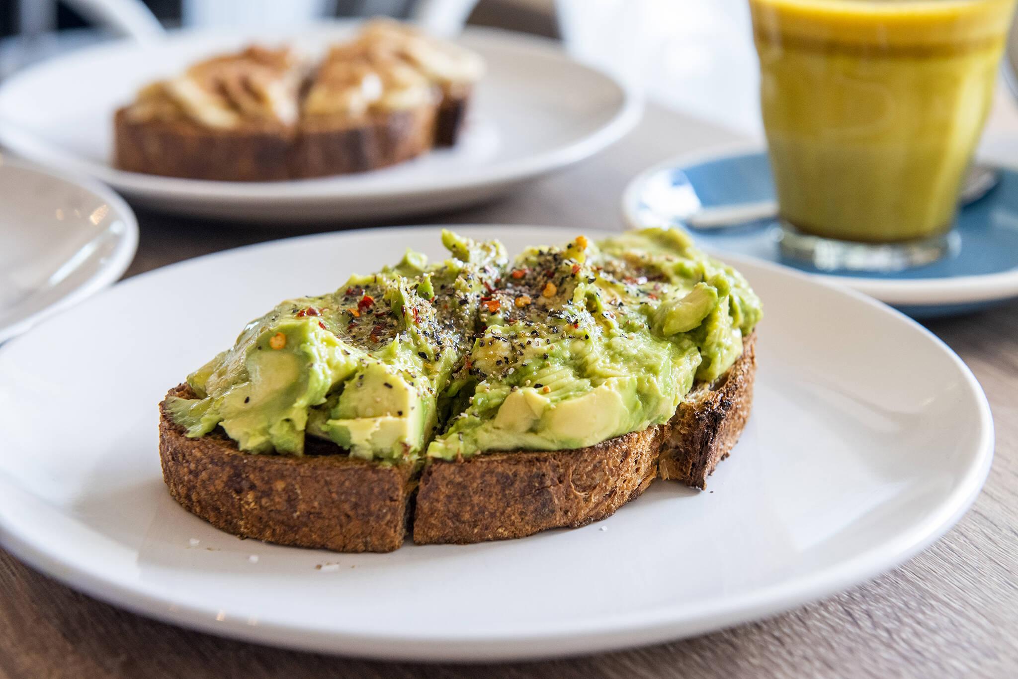 avocado toast toronto
