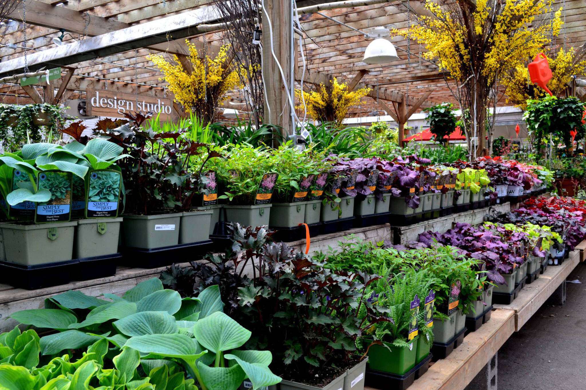 The Top 10 Garden Centres In Toronto