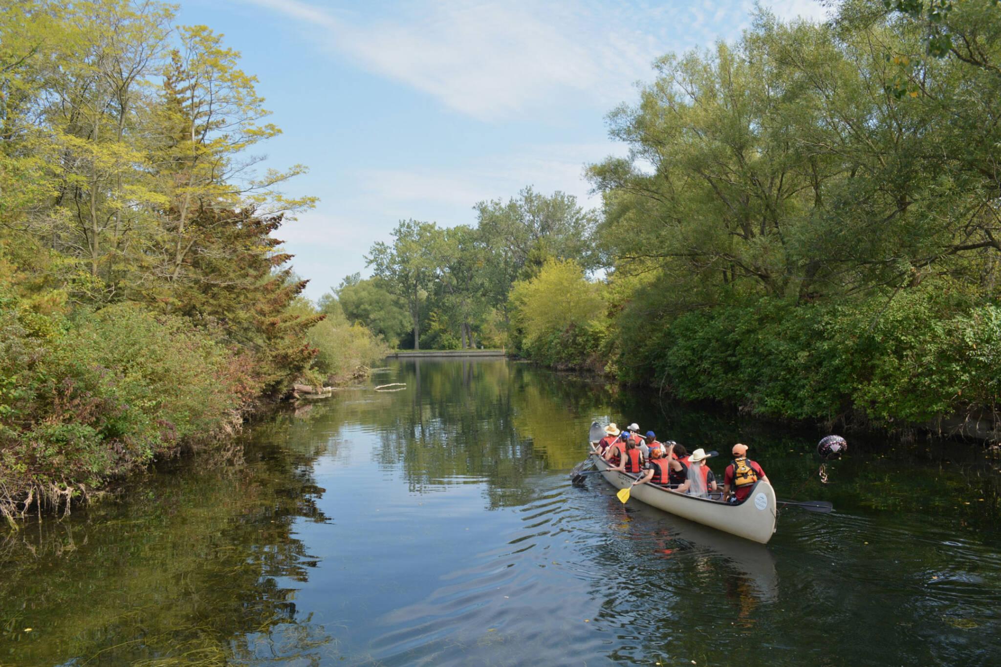 Canoeing Toronto