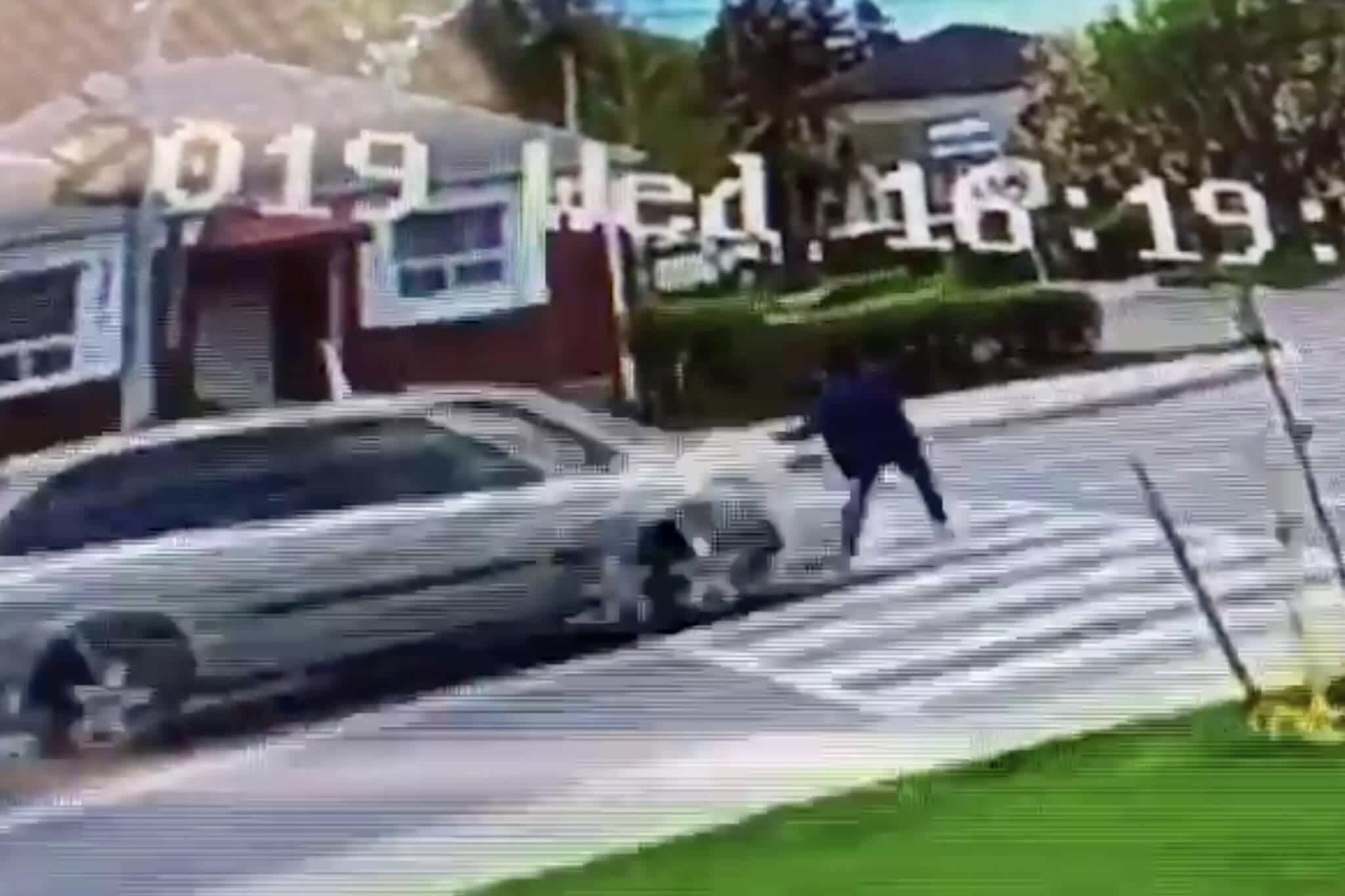 toronto pedestrian hit