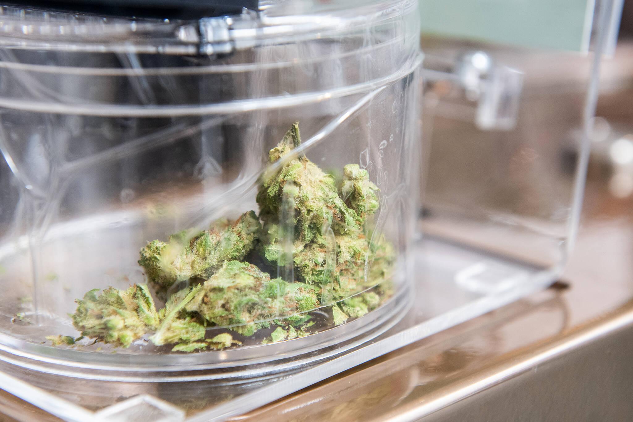 cannabis pardons canada