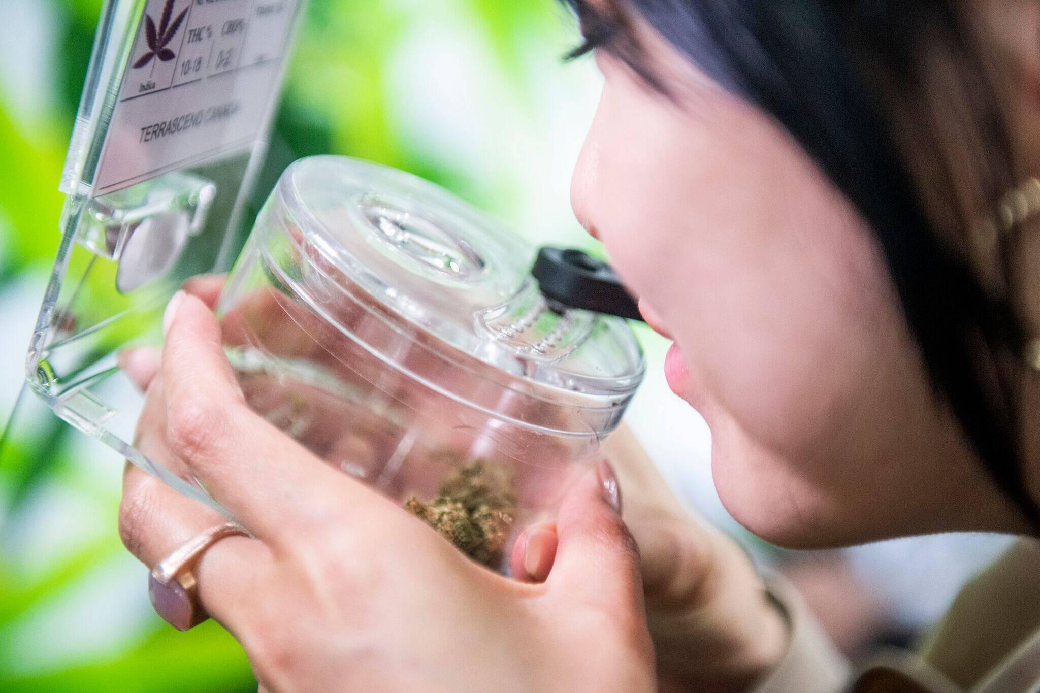 toronto cannabis stores