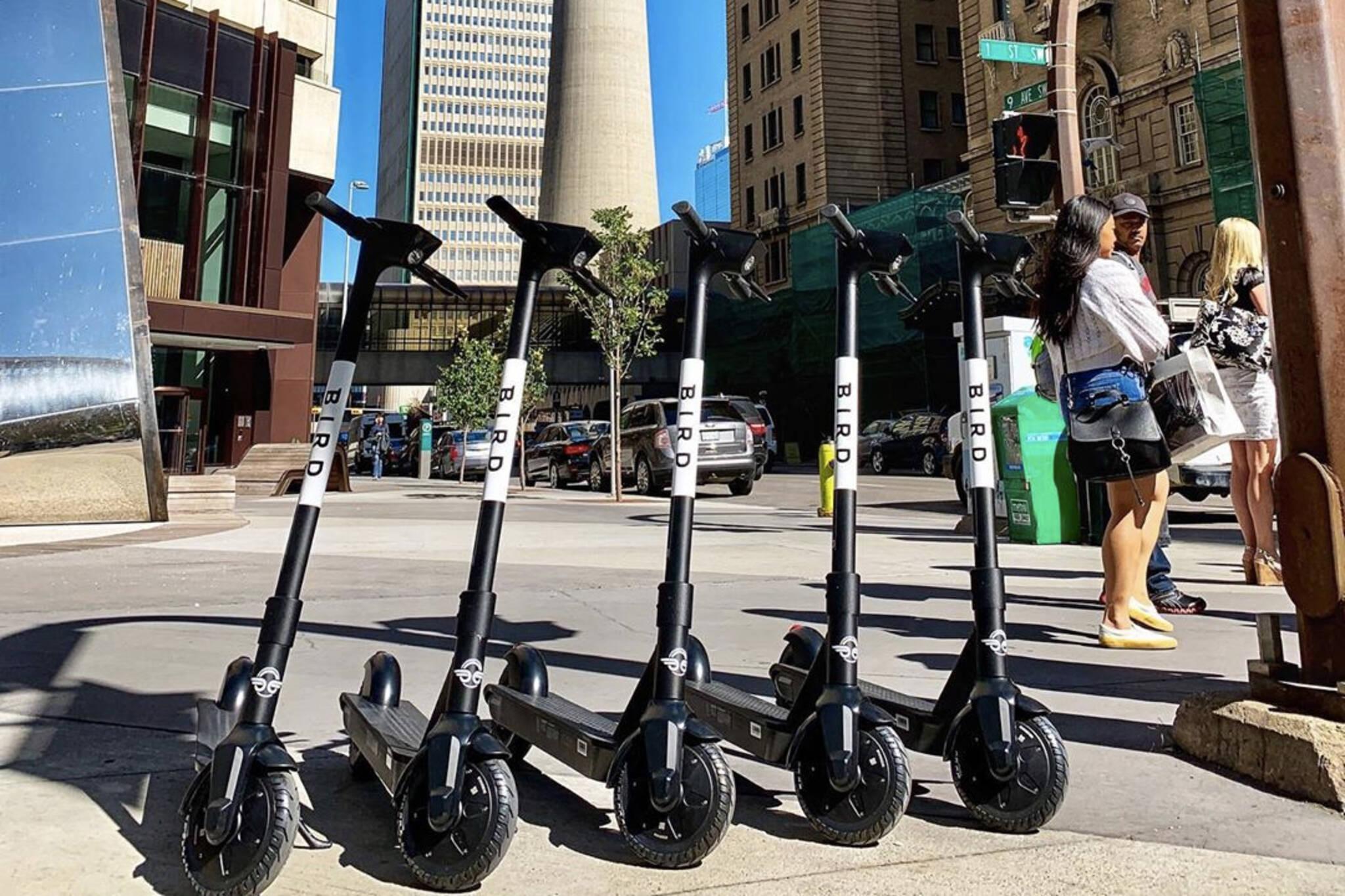bird scooters toronto