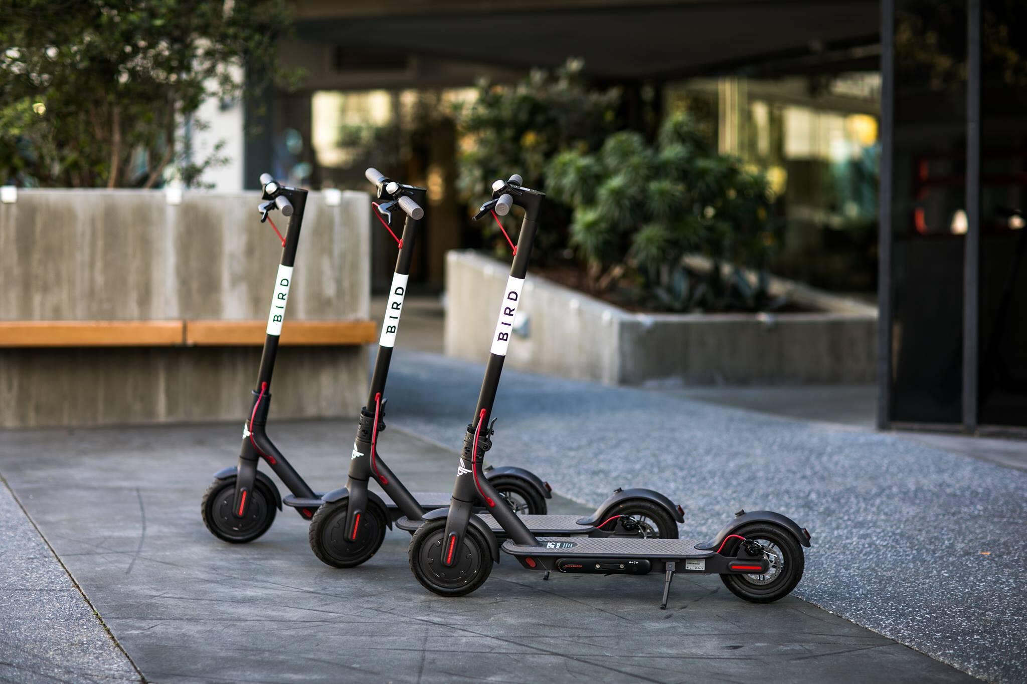 e-scooter ban toronto