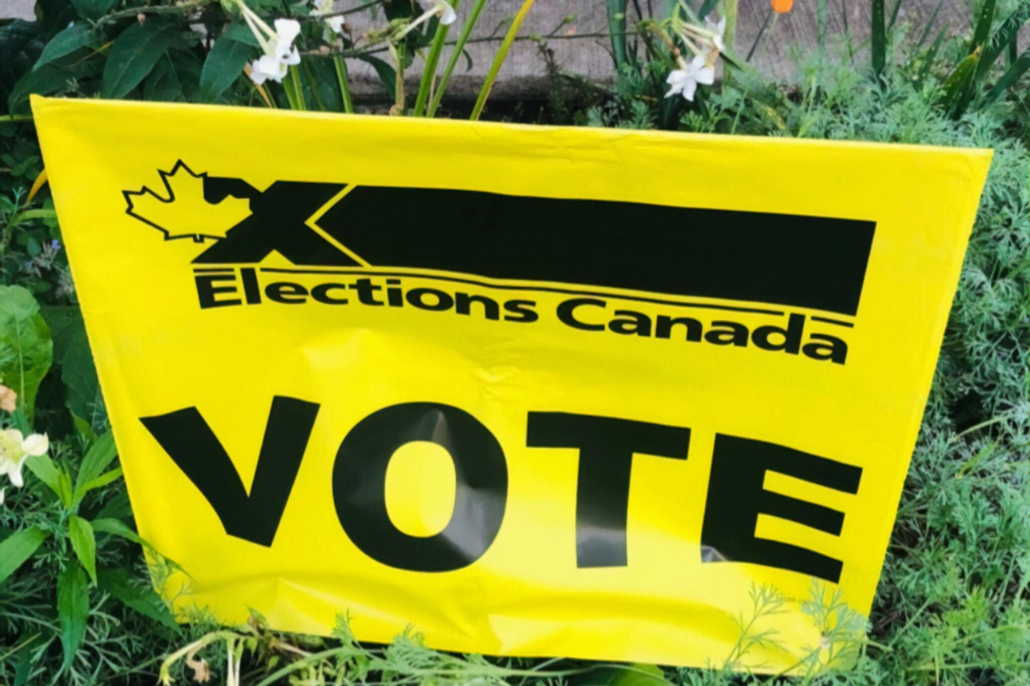 canadian electio early voting