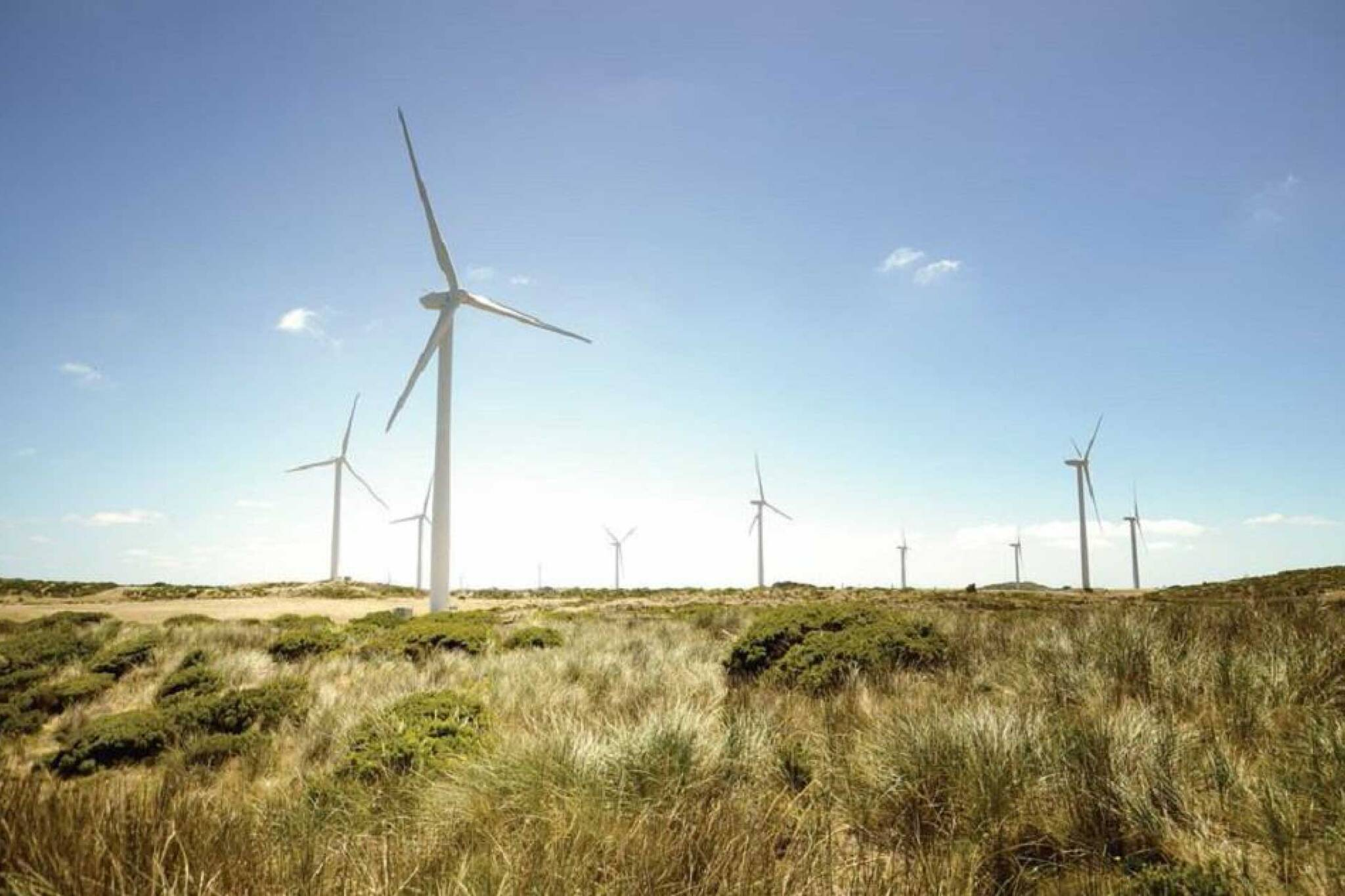 nation rise wind farm