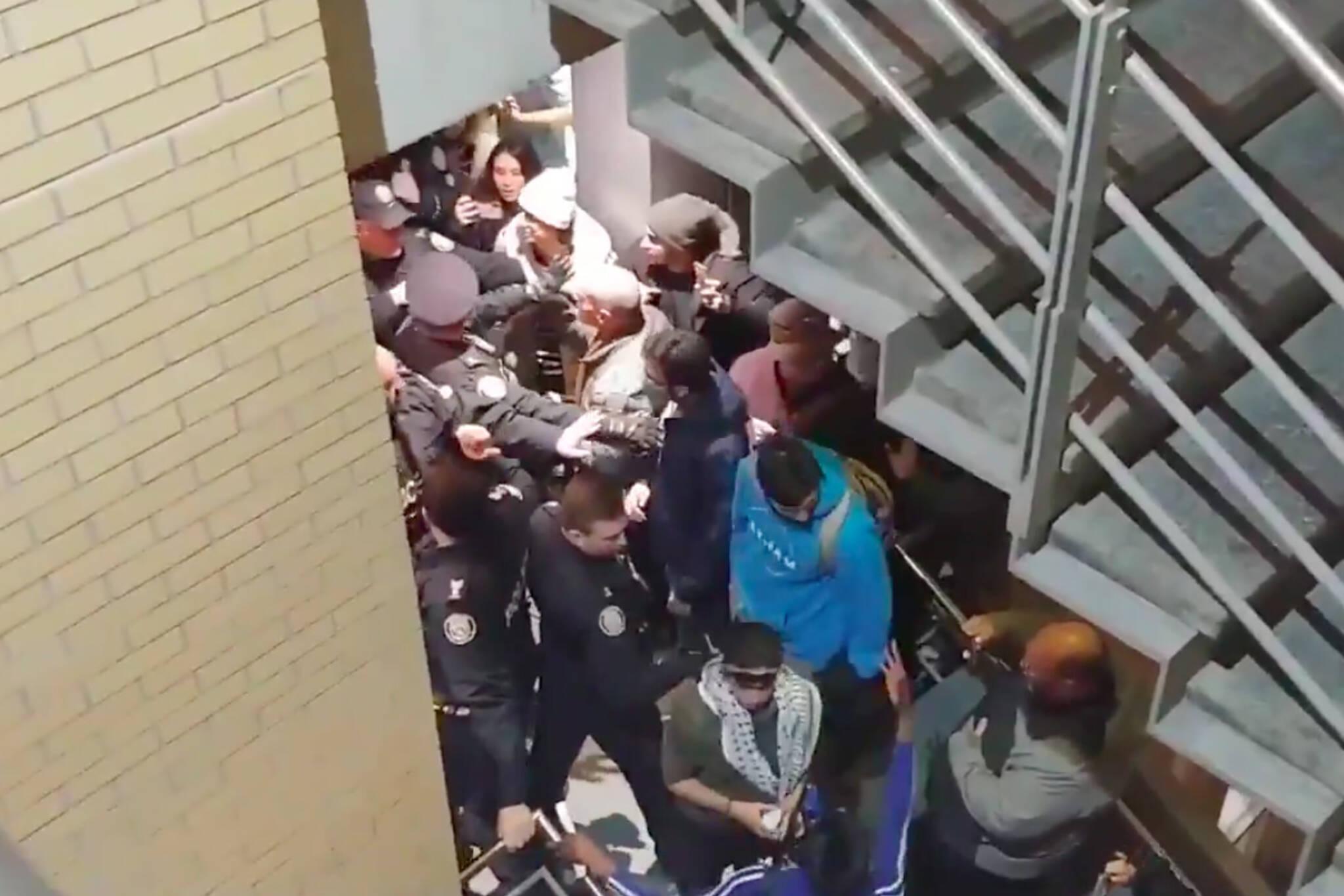 york university protest