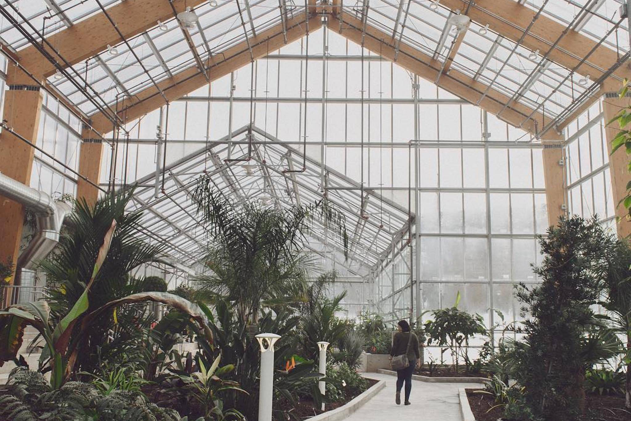 gage park greenhouse