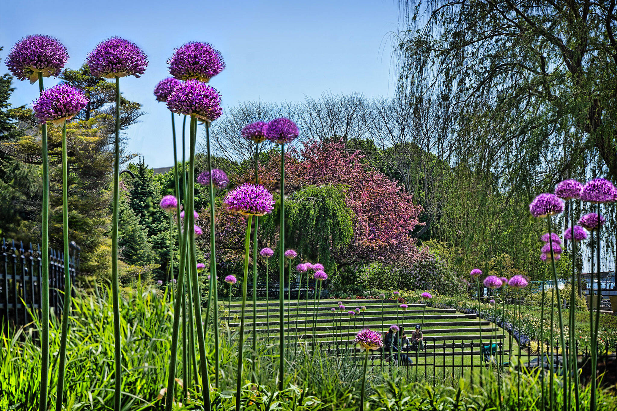 gardens toronto