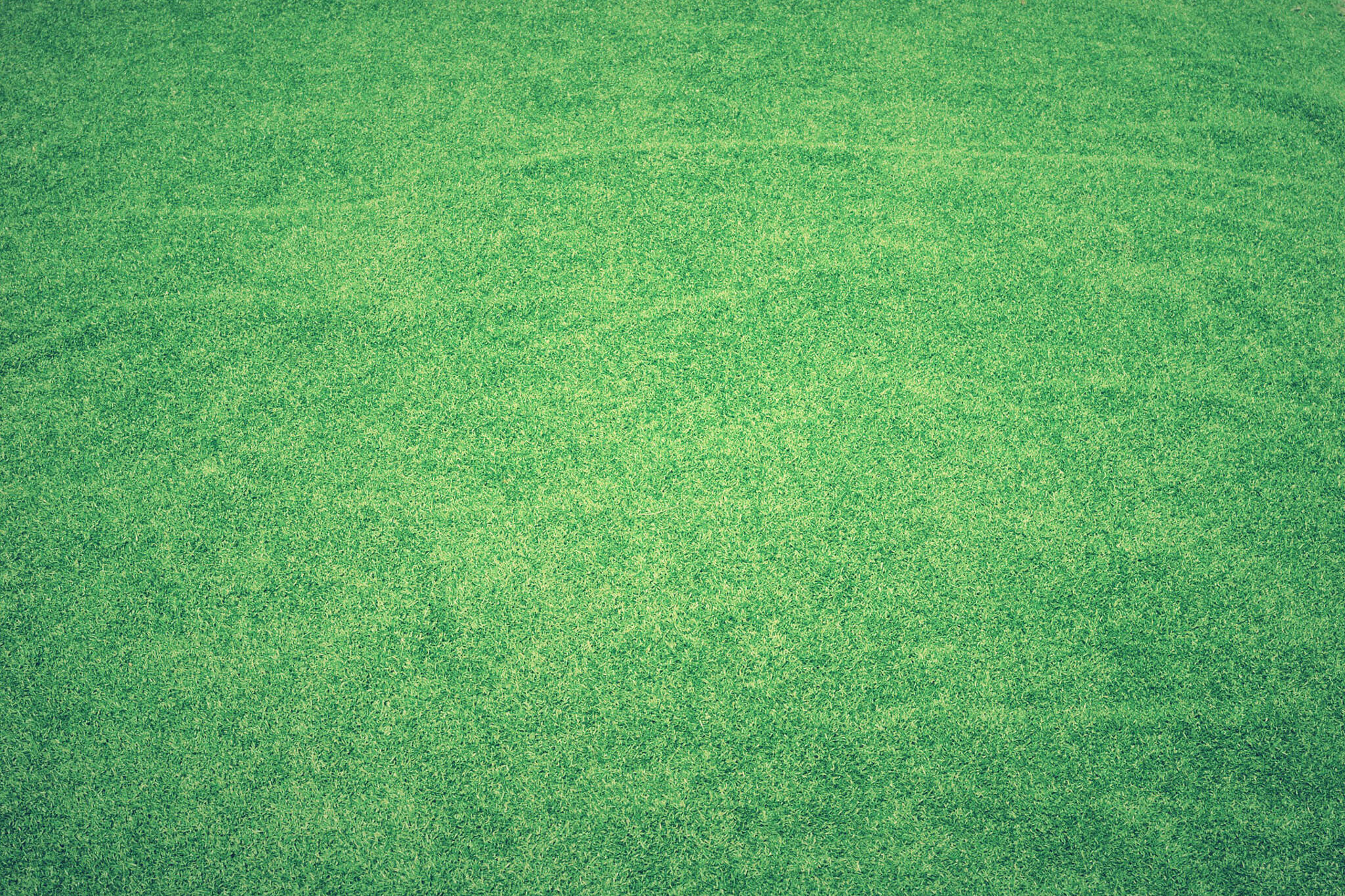 artificial grass toronto