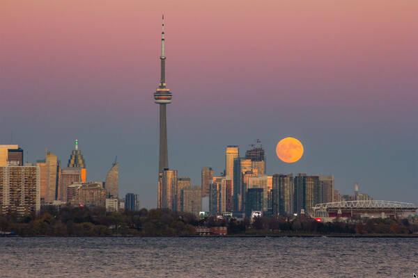 The Parlour Toronto - blogTO - Toronto