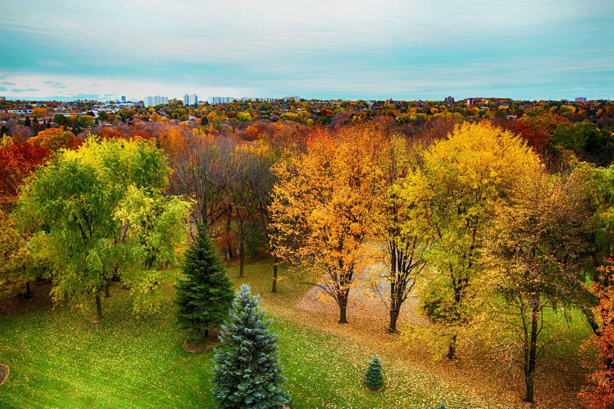outdoor fall activities toronto