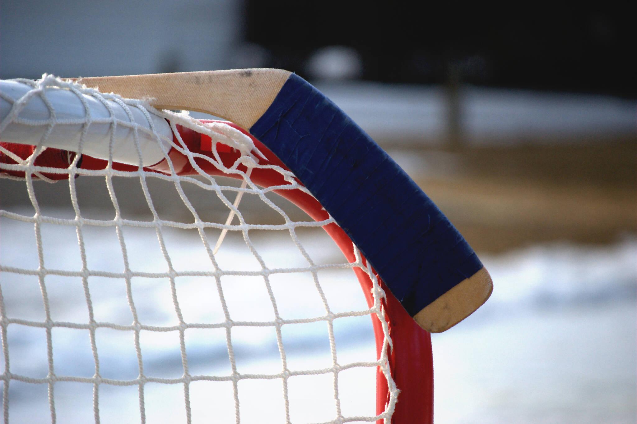 hockey stick fight