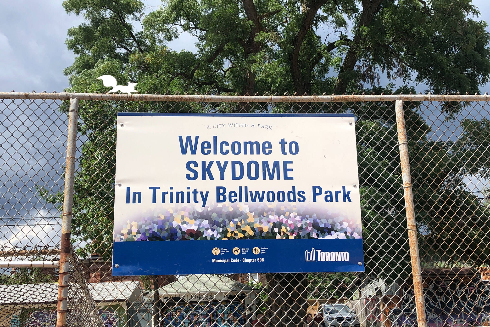 trinity bellwoods skydome